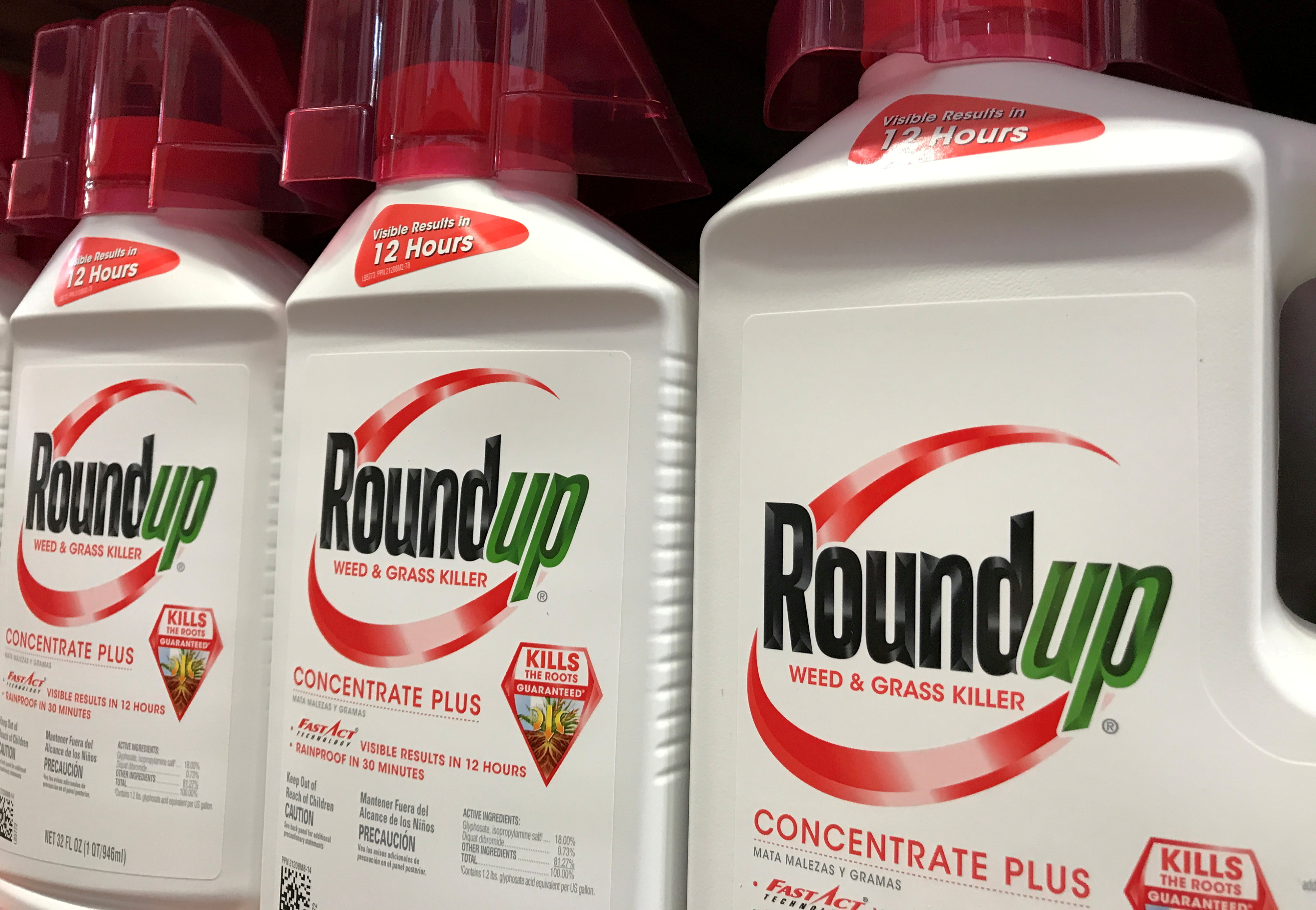 Bayer unit Monsanto Co's Roundup is shown for sale in Encinitas, California, U.S., June 26, 2017.  REUTERS/Mike Blake/File Photo