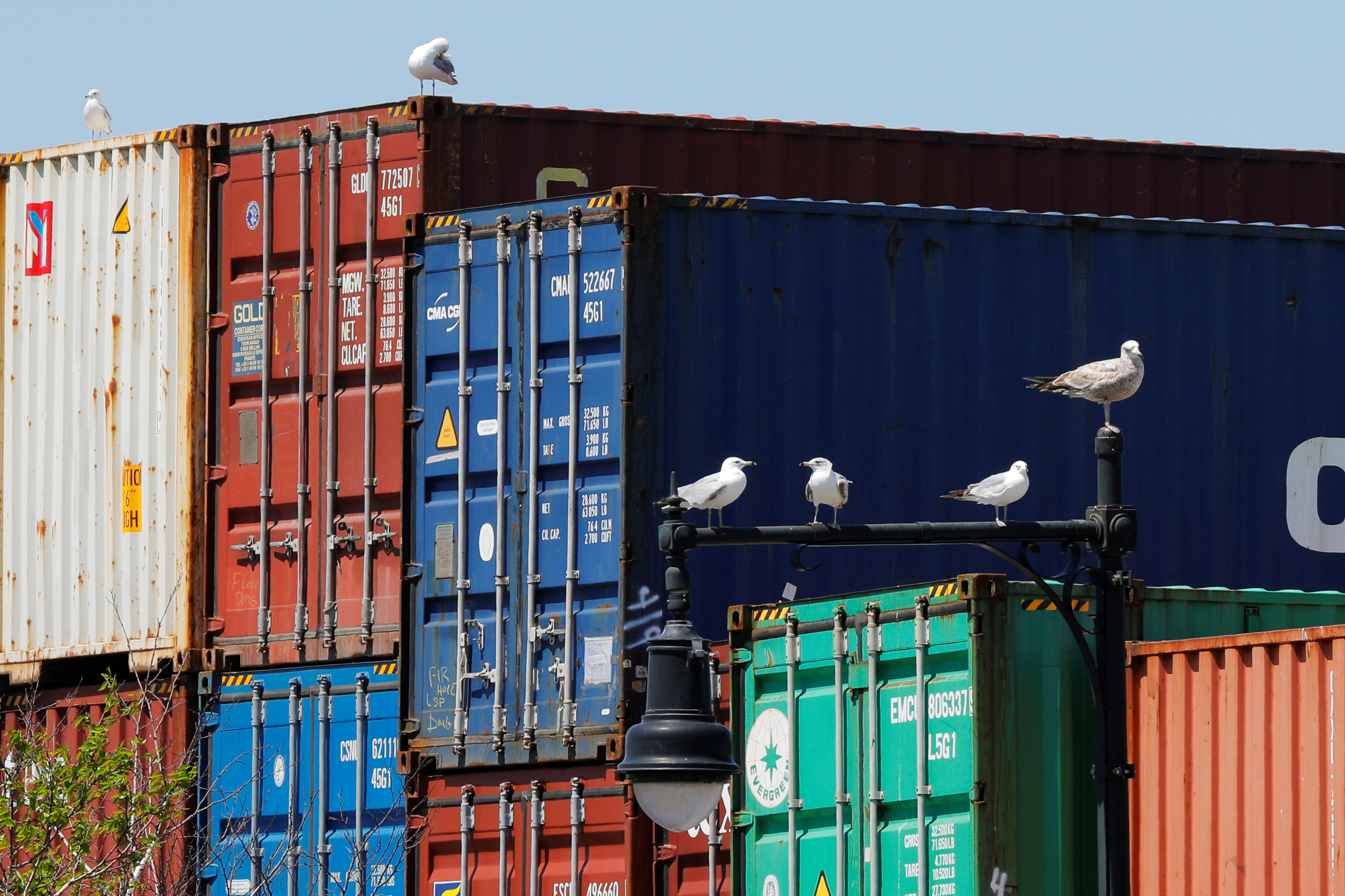 Sea gulls sit on a lamppost beside shipping containers stacked at the Paul W. Conley Container Terminal in Boston, Massachusetts, U.S., May 9, 2018.   REUTERS/Brian Snyder