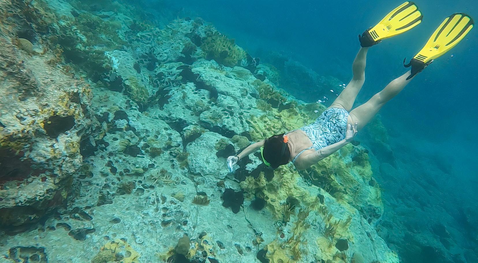 La científica marina Deborah Brosnan realiza una inmersión de investigación en un arrecife de coral, en este folleto sin fecha en Antigua y Barbuda, 2020. Cortesía de Deborah Brosnan & Associates / Folleto a través de REUTERS