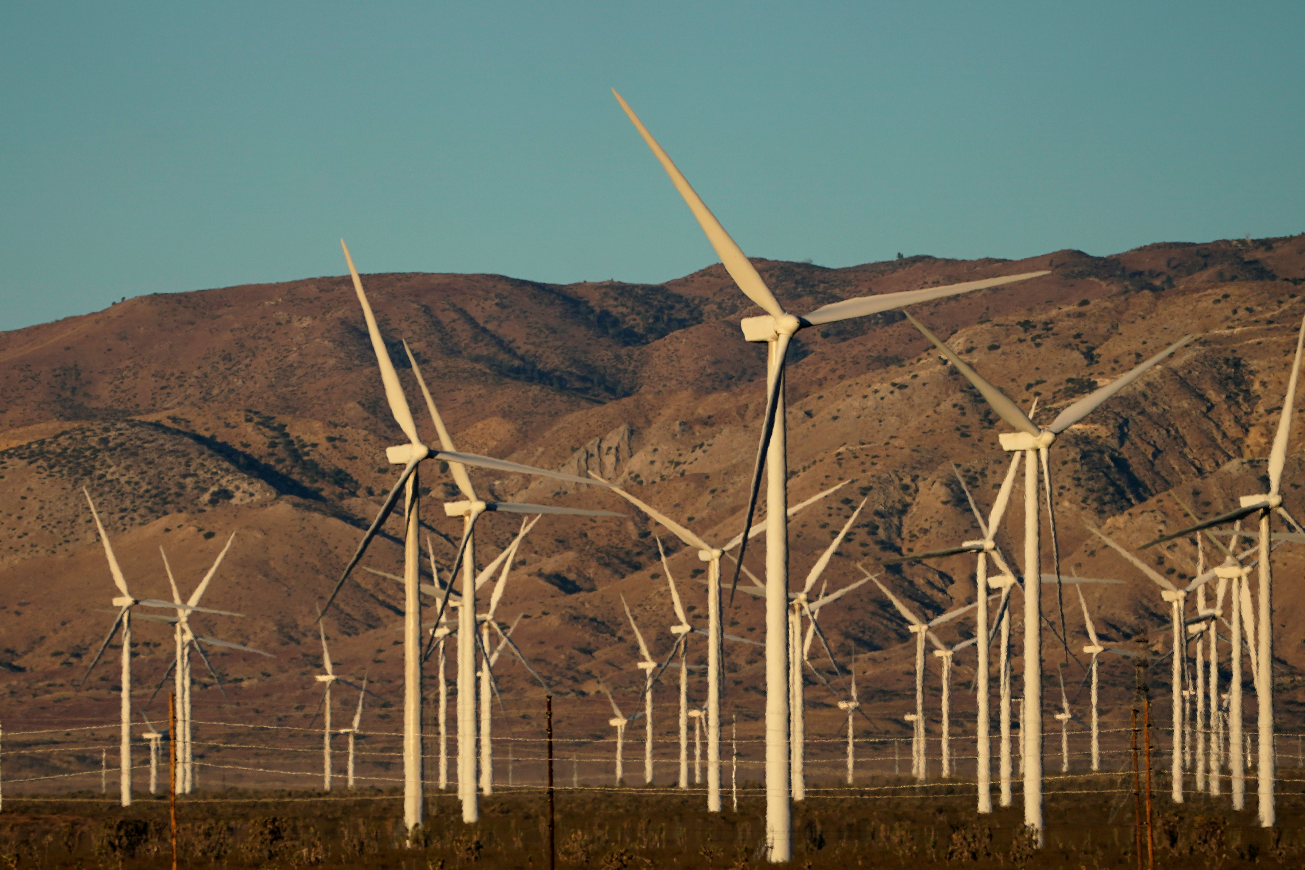 A wind farm is shown in Movave, California, U.S., November 8, 2019.  REUTERS/Mike Blake/