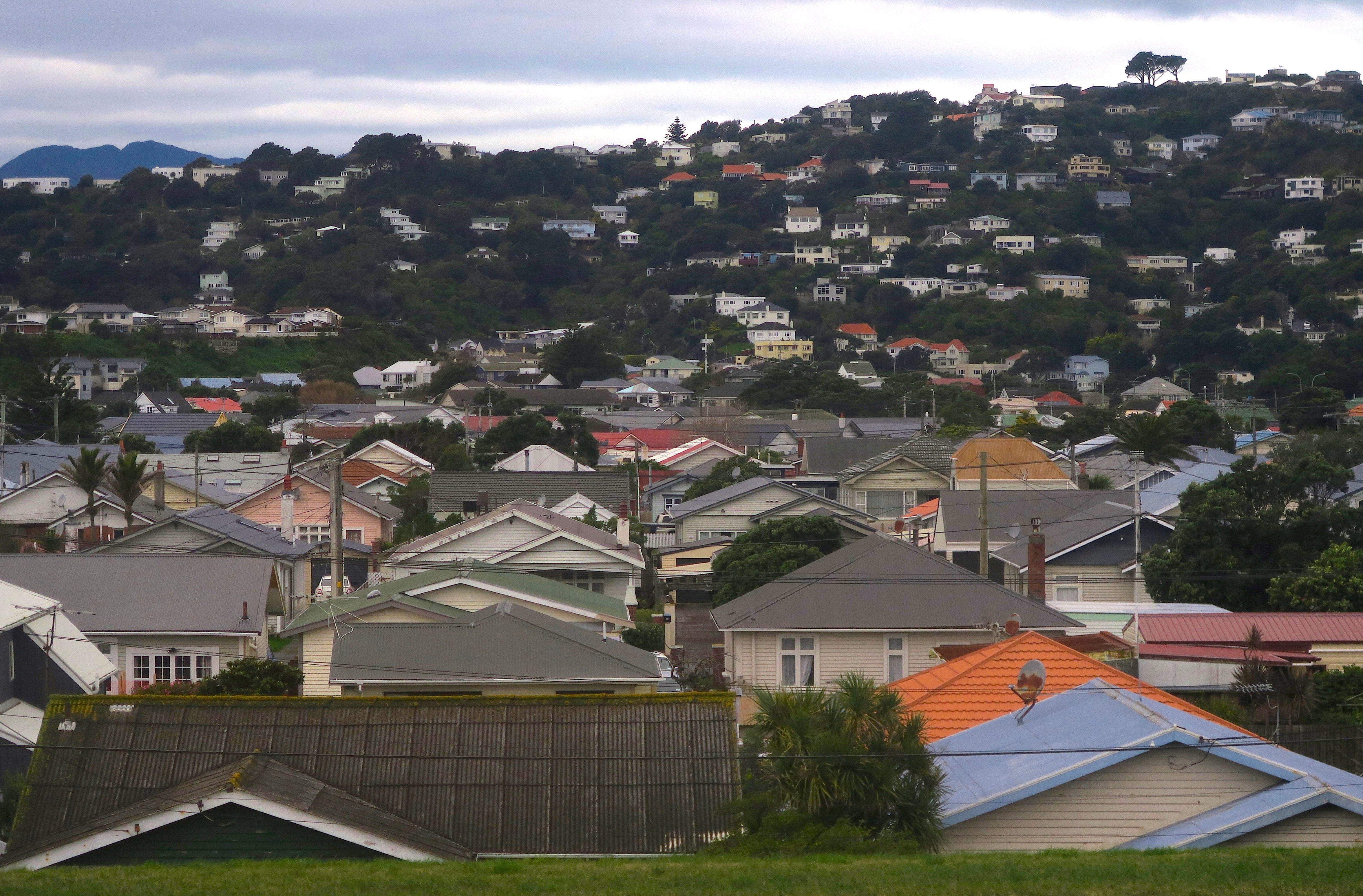 Residential houses are seen in Wellington, New Zealand, July 1, 2017.   REUTERS/David Gray
