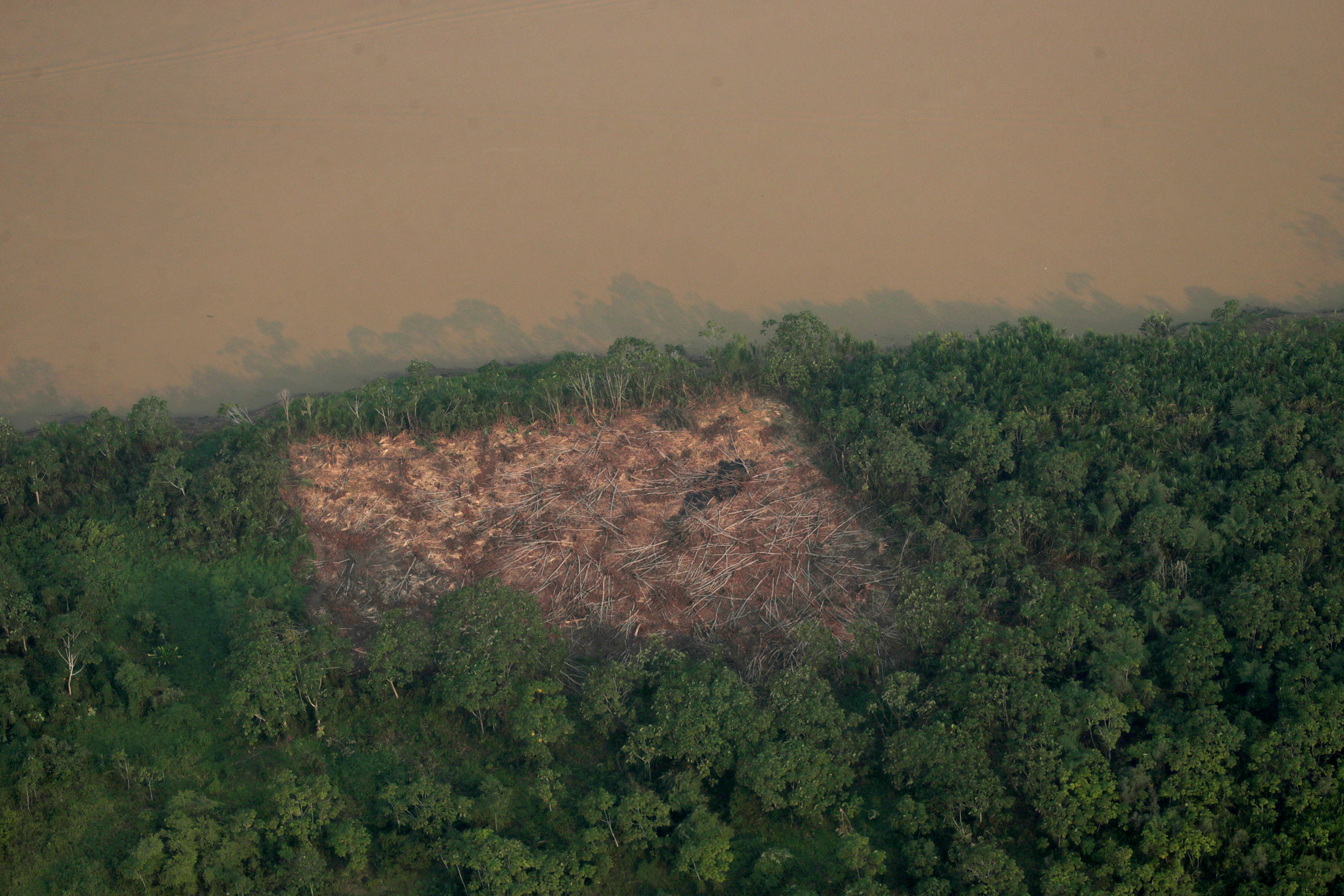 An aerial view shows a deforested plot of the Amazon near Porto Velho, Rondonia State, Brazil August 21, 2019. REUTERS/Ueslei Marcelino