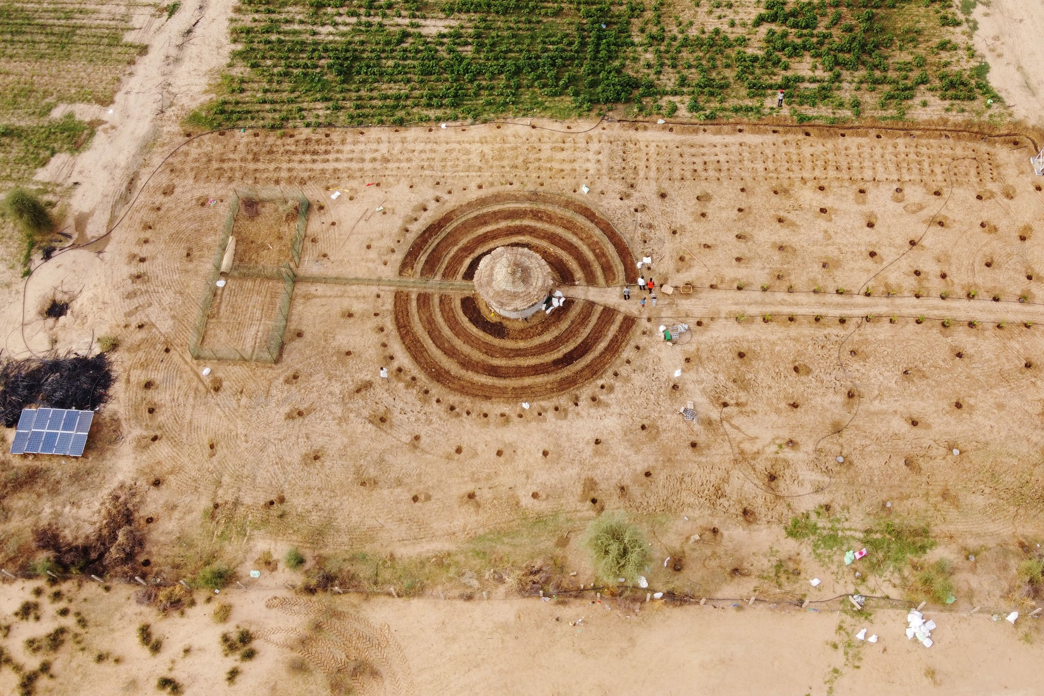 An aerial view shows participants of a Tolou Keur programme working on a newly built Tolou Keur garden in Boki Diawe, within the Great Green Wall area, in Matam region, Senegal, July 10, 2021.   REUTERS/Zohra Bensemra