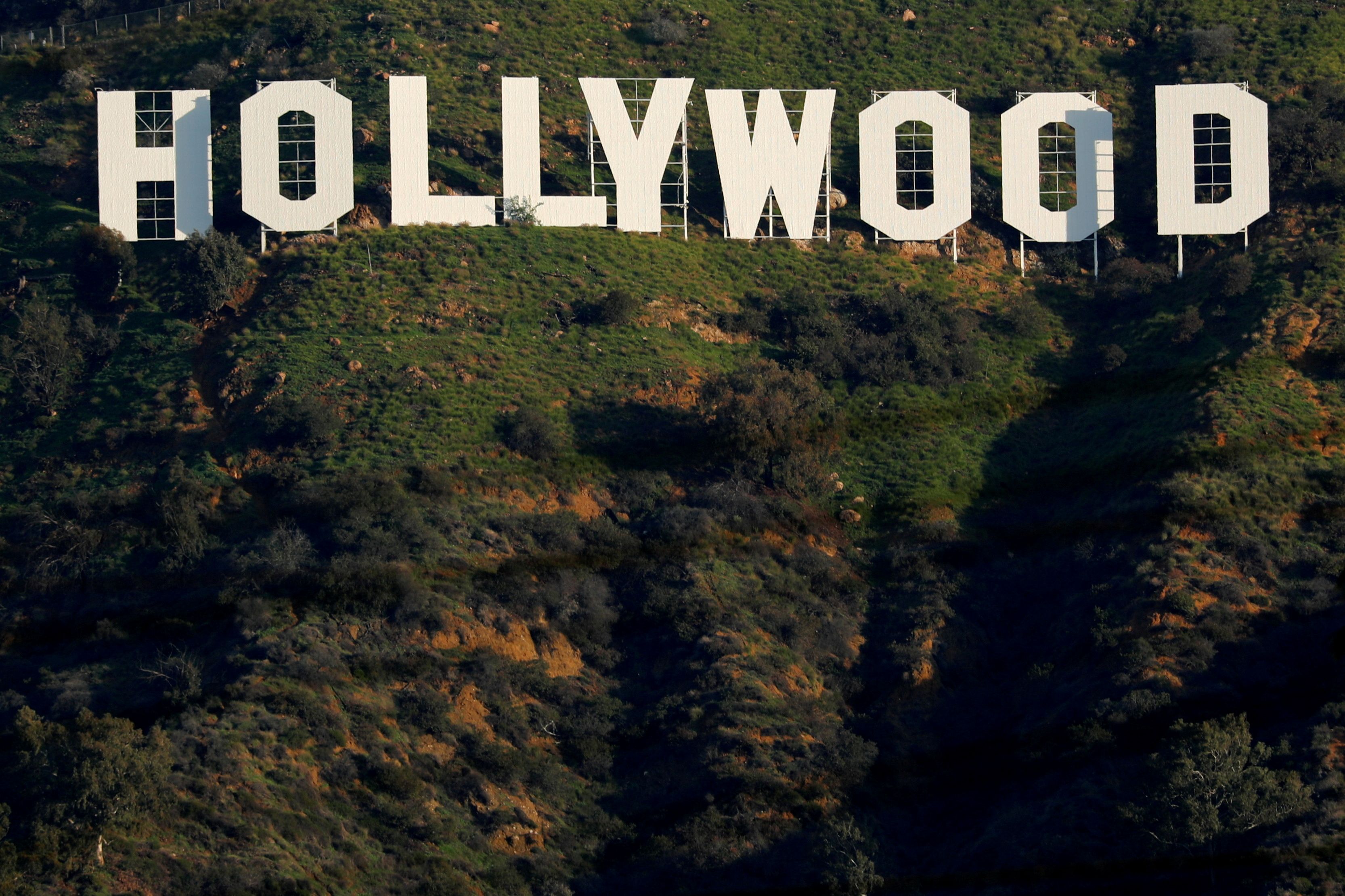 The iconic Hollywood sign is shown on a hillside above a neighborhood in Los Angeles California, U.S., February 1, 2019. REUTERS/Mike Blake/File Photo