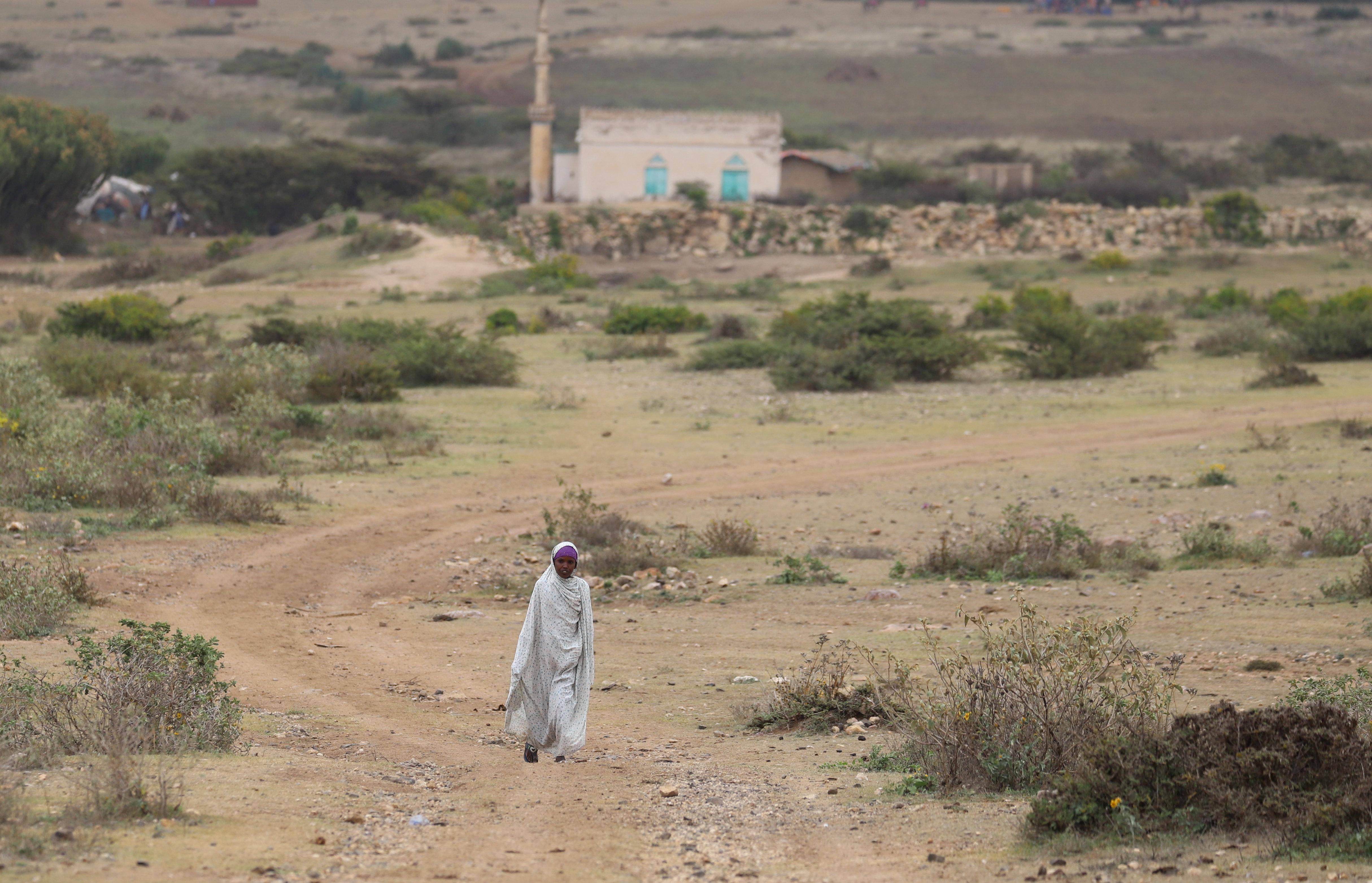 An internally displaced Ethiopian girl walks back to her village Sariir in Somali Region, Ethiopia January 13, 2020.   REUTERS/Giulia Paravicini