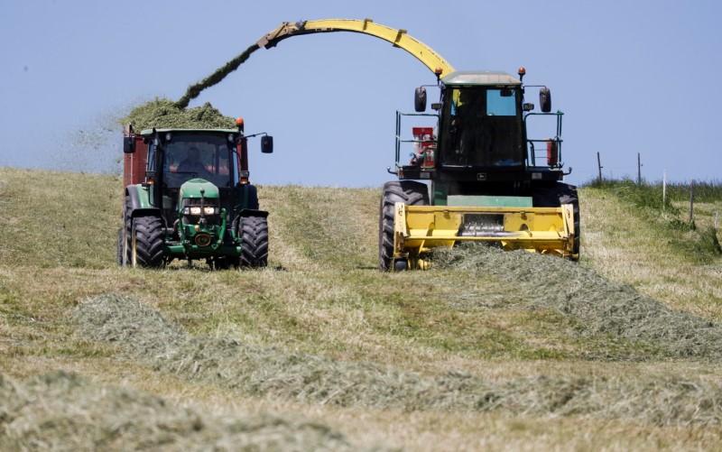 A farmer uses a machine to load cut hay on a trailer near Birmensdorf, Switzerland June 1 2021. Reuters/Arnd Wiegmann/File Photo