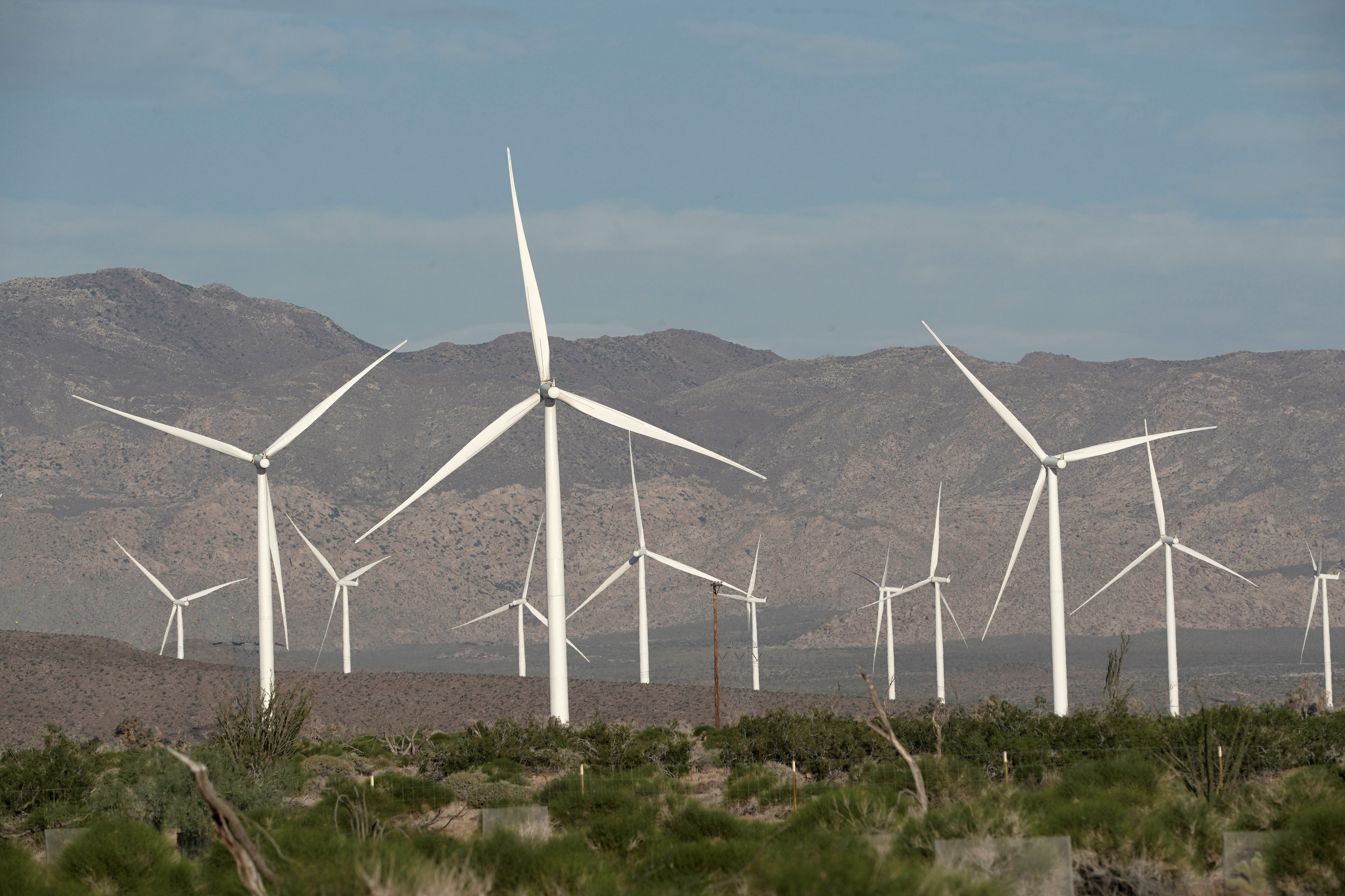 Power-generating Siemens 2.37 megawatt (MW) wind turbines are seen at the Ocotillo Wind Energy Facility  California, U.S., May 29, 2020.  REUTERS/Bing Guan
