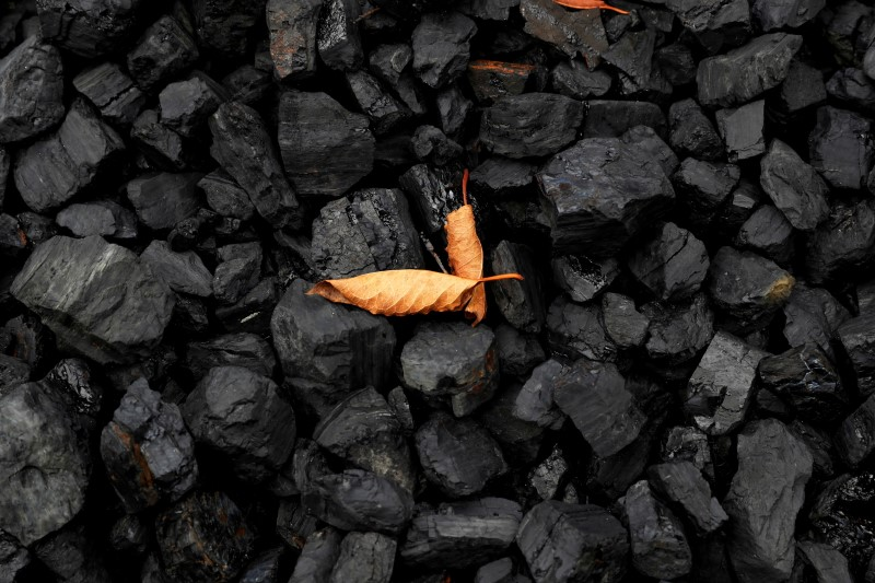 A leaf sits on top of a pile of coal in Youngstown, Ohio, U.S., September 30, 2020. REUTERS/Shannon Stapleton/File Photo