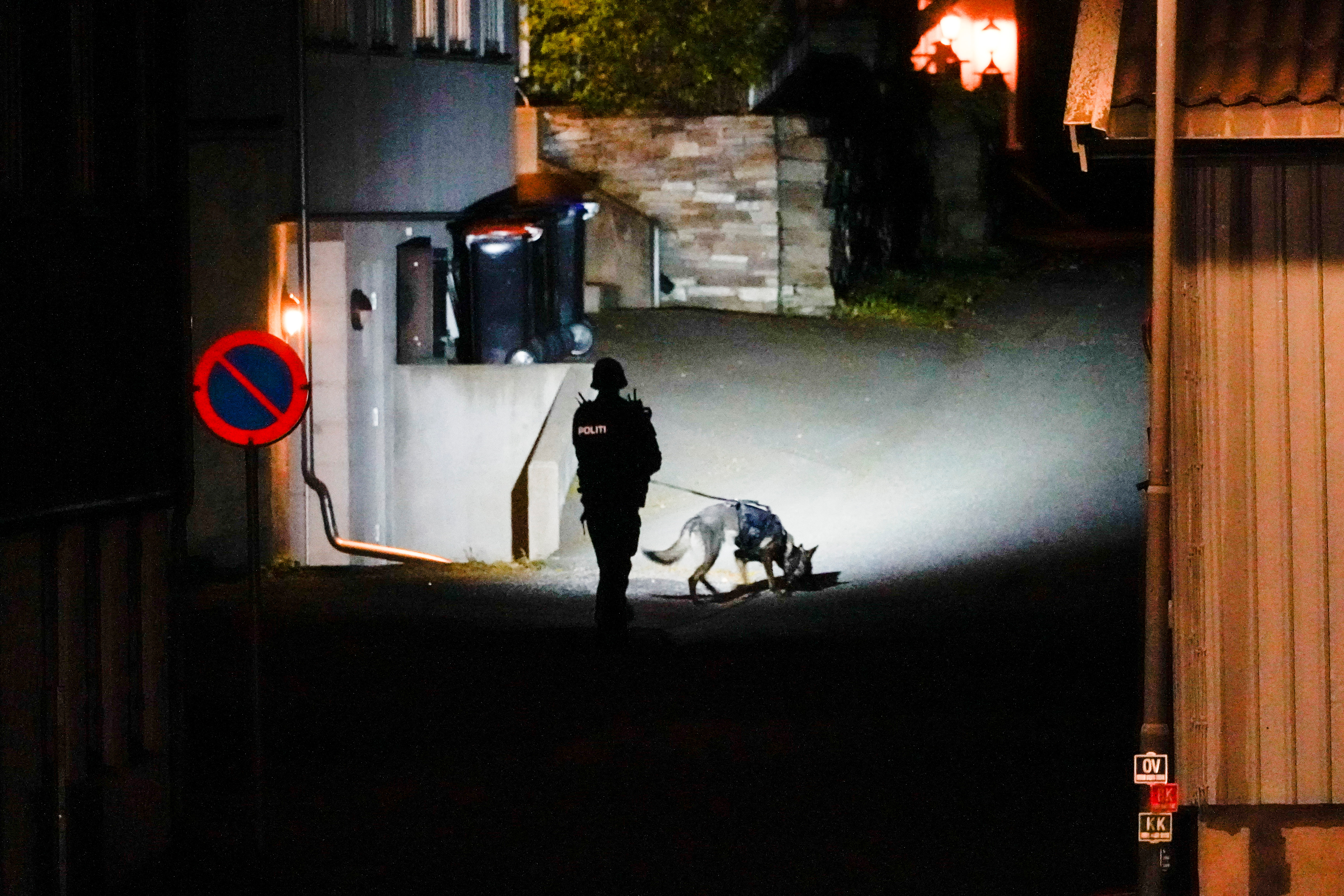 A police officer investigates after several people were killed and others were injured by a man using a bow and arrows to carry out attacks, in Kongsberg, Norway, October 13, 2021. Hakon Mosvold/NTB/via REUTERS