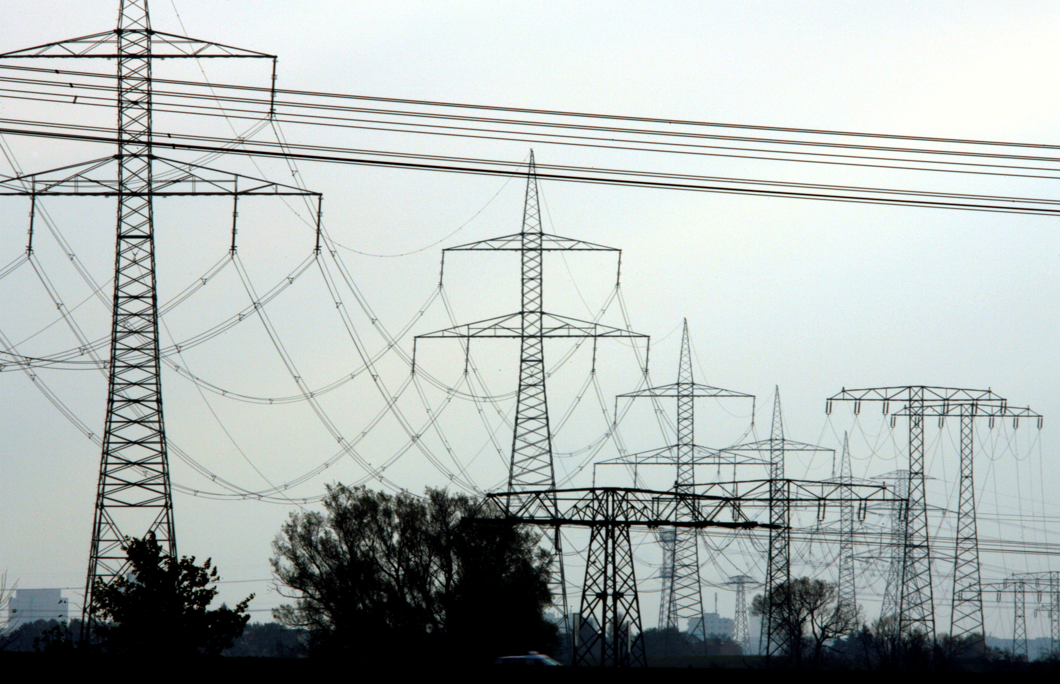 High-voltage power lines and electricity pylons pictured near Berlin, November 7, 2006. REUTERS/Pawel Kopczynski/File Photo