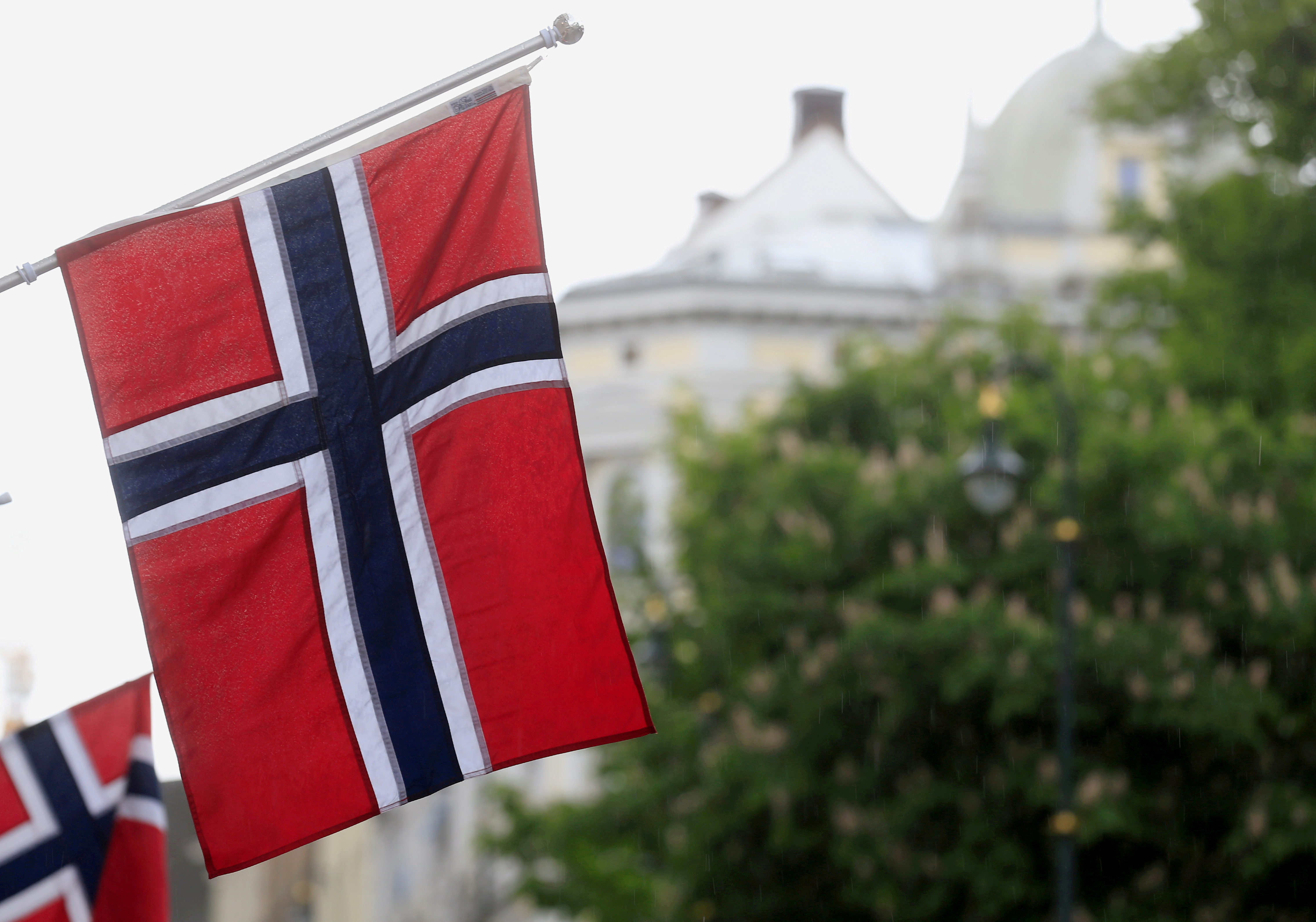 Norwegian flags flutter at Karl Johans street in Oslo, Norway, May 31, 2017. REUTERS/Ints Kalnins