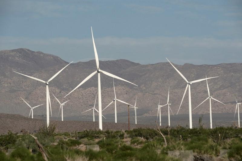 Power-generating Siemens 2.37 megawatt (MW) wind turbines are seen at the Ocotillo Wind Energy Facility  California, U.S., May 29, 2020.  REUTERS/Bing Guan//File Photo/File Photo
