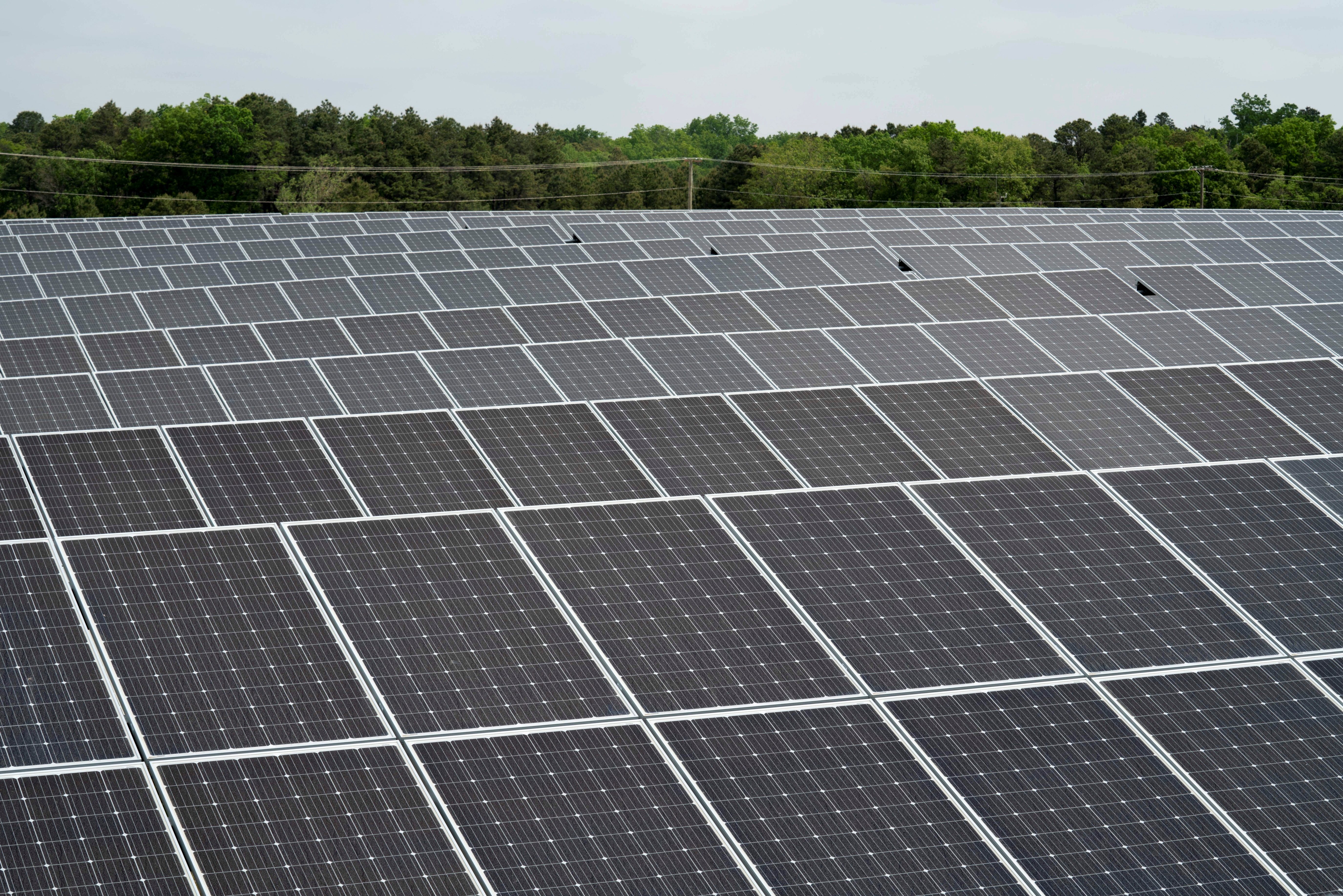 Rows of solar panels at the Toms River Solar Farm which was built on an EPA Superfund site in Toms River, New Jersey, U.S., 26 May, 2021. Picture taken May 26, 2021. REUTERS/Dane Rhys/File Photo