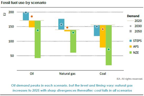 Fossil fuel use by scenario