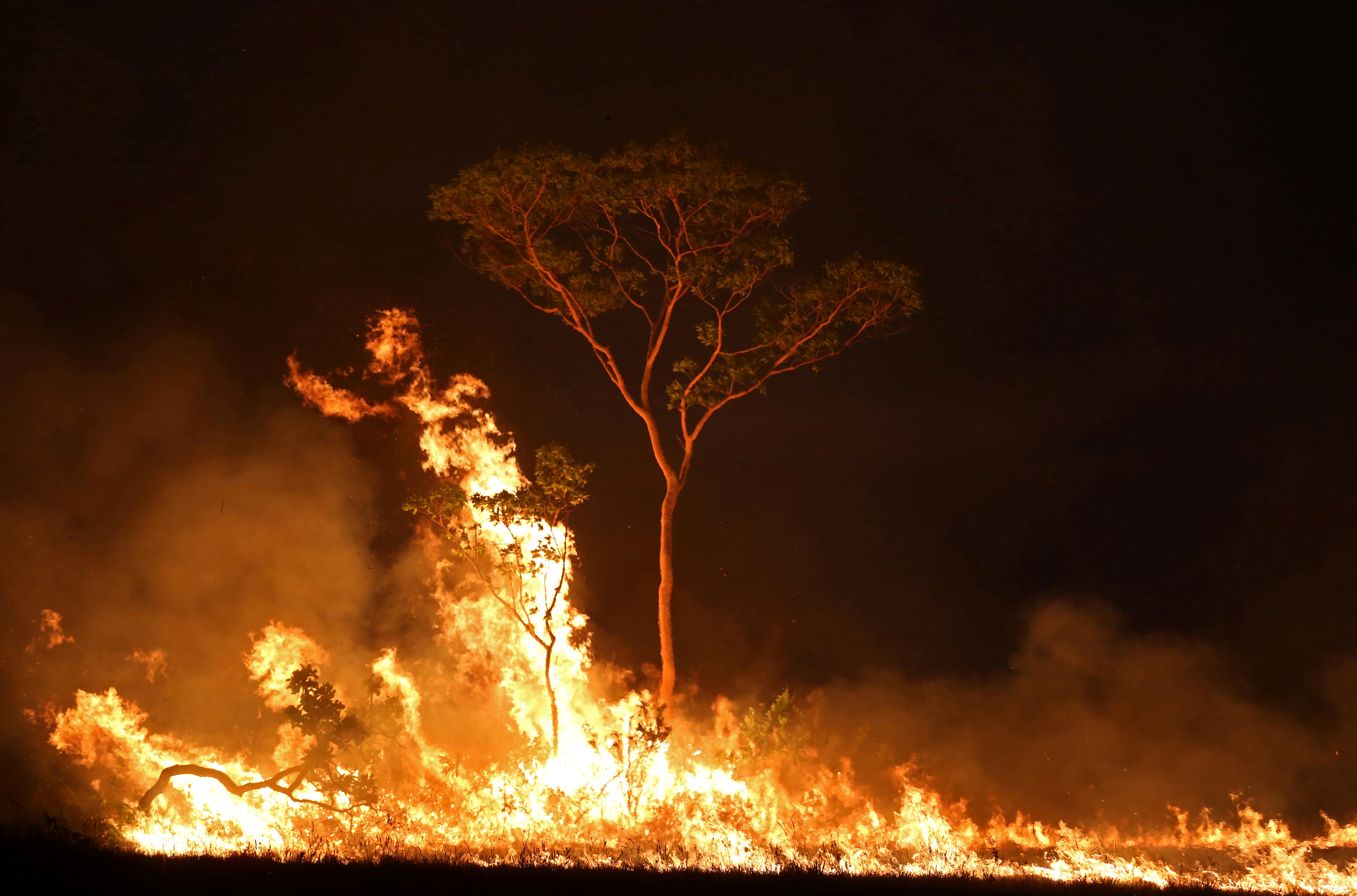 A fire is seen on a tract of Amazon jungle at Tenharim Marmelos Indigenous Land, Amazonas state, Brazil, September 15, 2019. REUTERS/Bruno Kelly