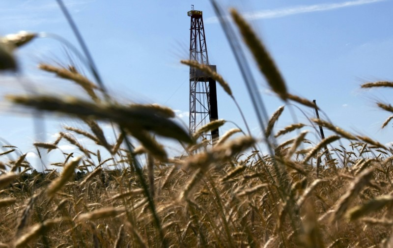 A well is seen through stalks of grain at test drilling site Markowola-1 near Kozienice, central Poland, where Poland's gas monopoly PGNiG hopes to find large amounts of shale gas July 9, 2010.REUTERS/Kacper Pempel/Files