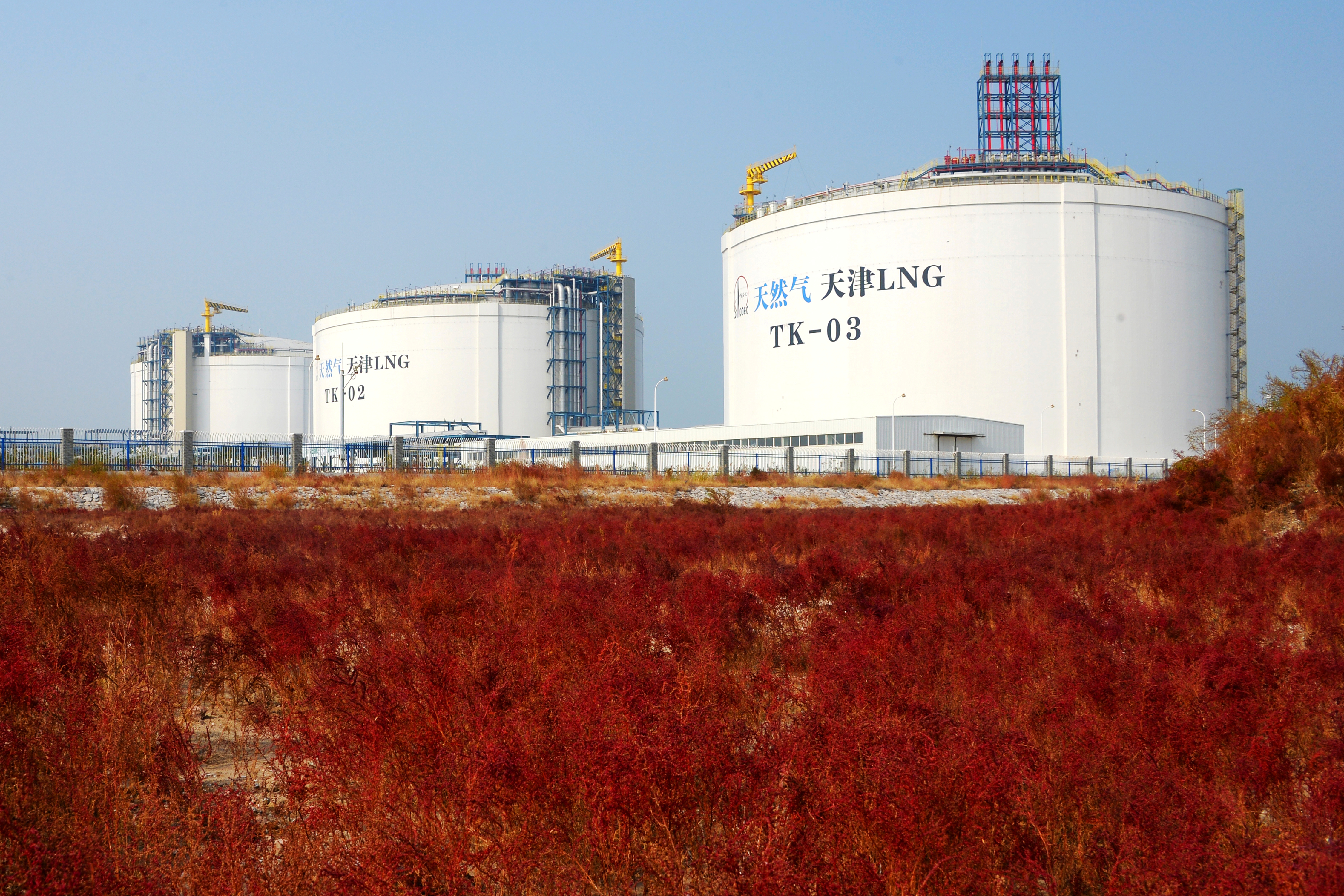 Liquefied natural gas (LNG) storage tanks are seen at the Sinopec Tianjin LNG receiving terminal in Tianjin, China October 22, 2018. Picture taken October 22, 2018. REUTERS/Stringer