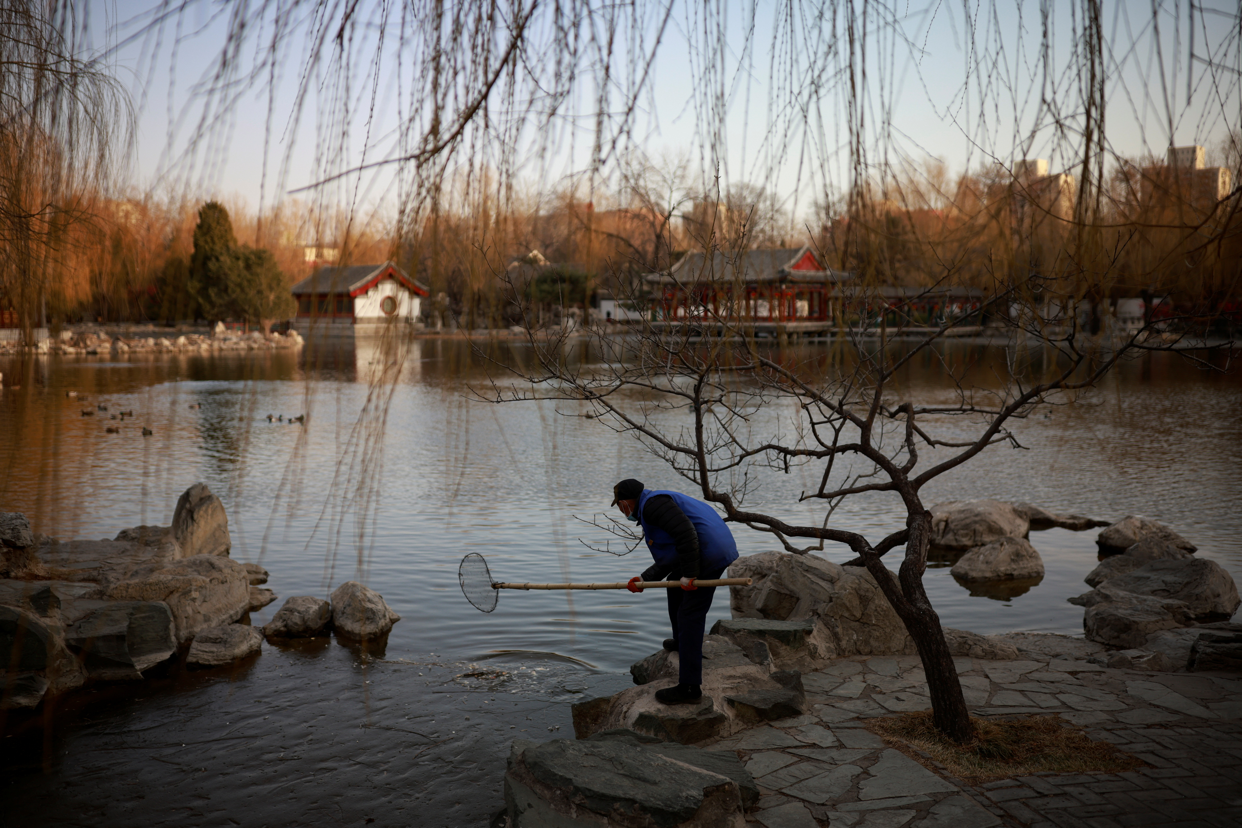 A worker cleans a lake in Daguanyuan Park as China celebrates Lunar New Year of the Ox following an outbreak of the coronavirus disease (COVID-19) in Beijing, China, February 15, 2021.  REUTERS/Thomas Peter