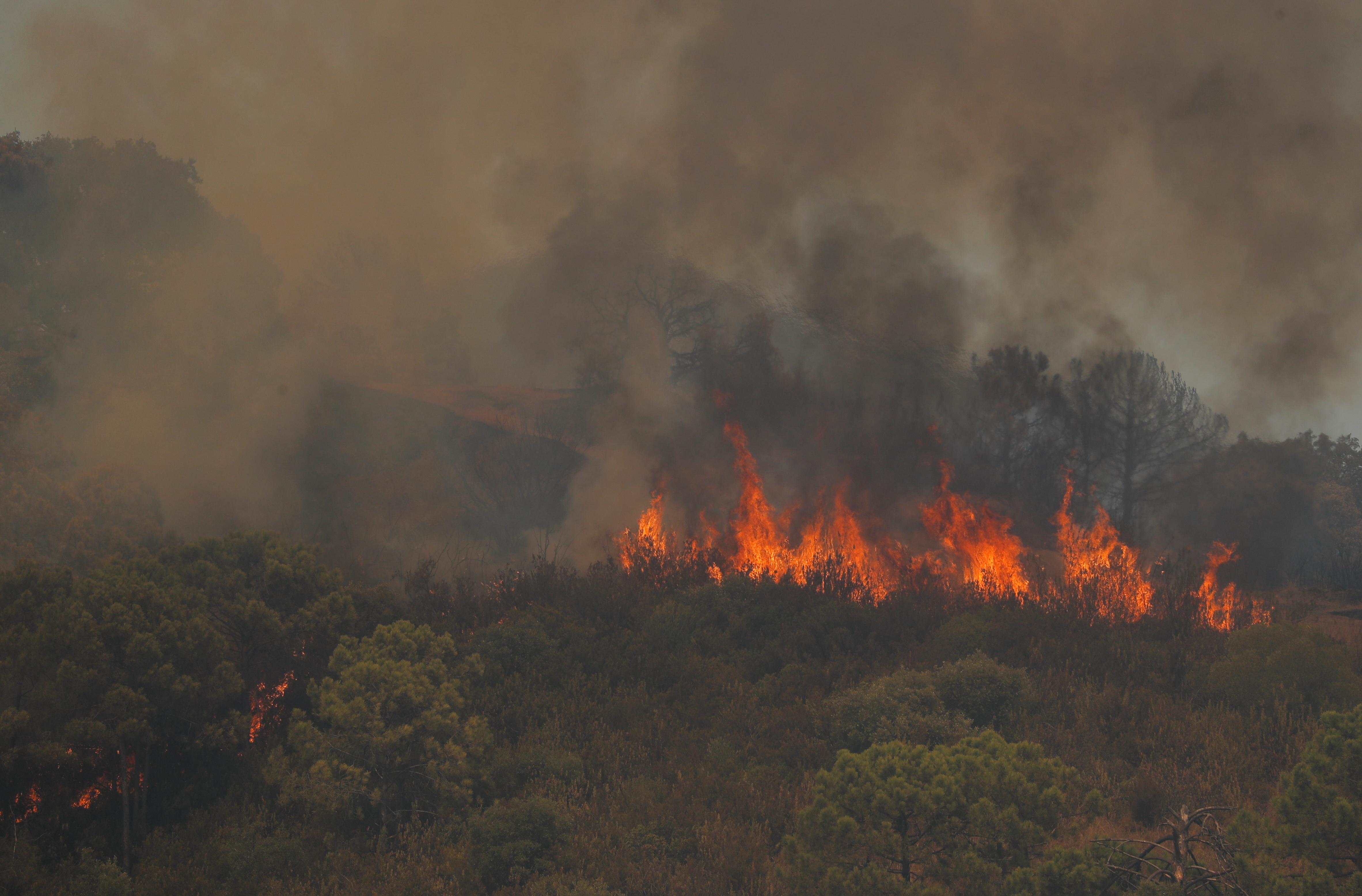 A wildfire burns on Sierra Bermeja mountain in Estepona, Spain, September 9, 2021. REUTERS/Jon Nazca