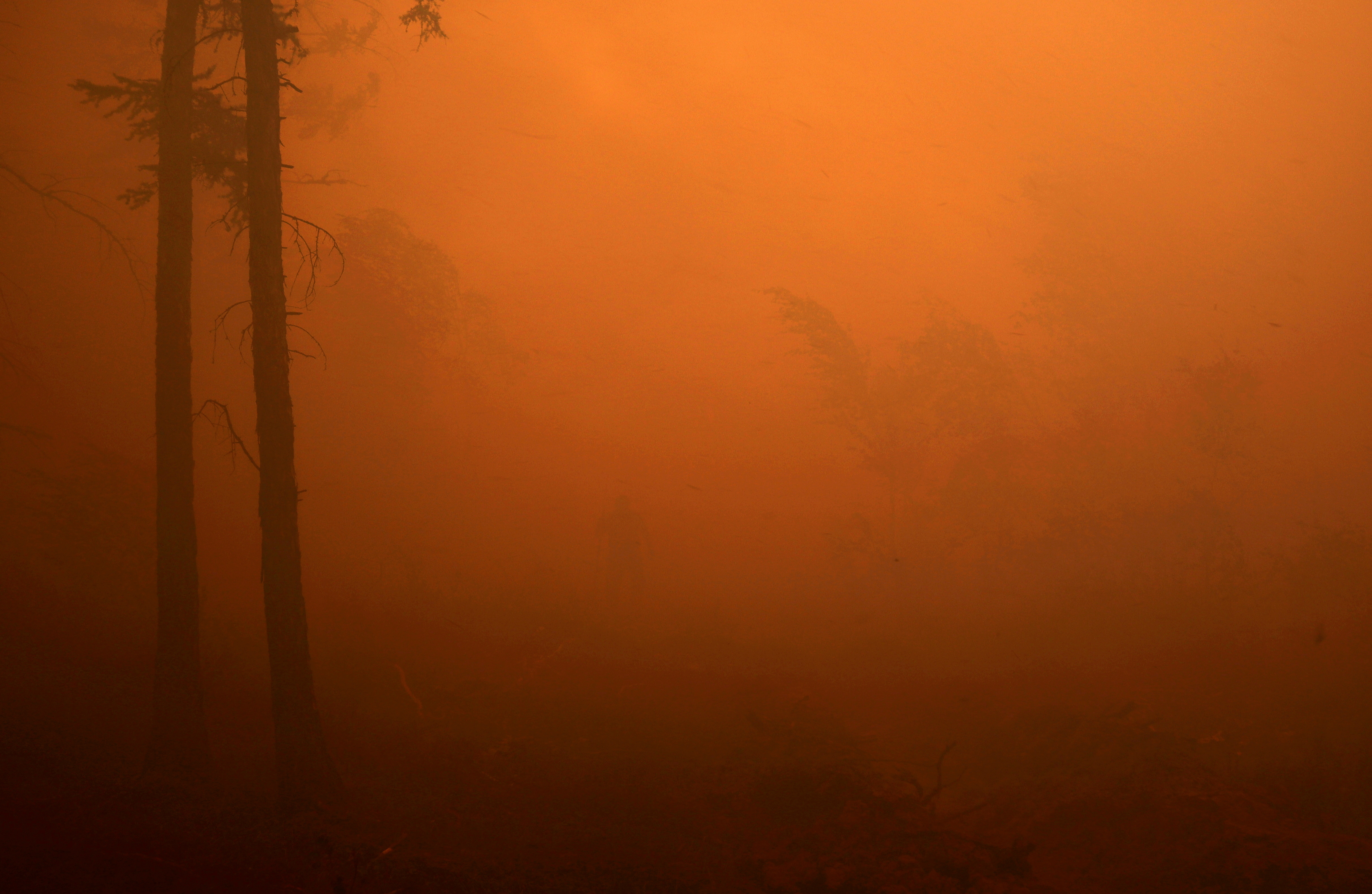 A firefighter works to extinguish a forest fire near the village of Magaras in the region of Yakutia, Russia July 17, 2021. REUTERS/Roman Kutukov/File Photo