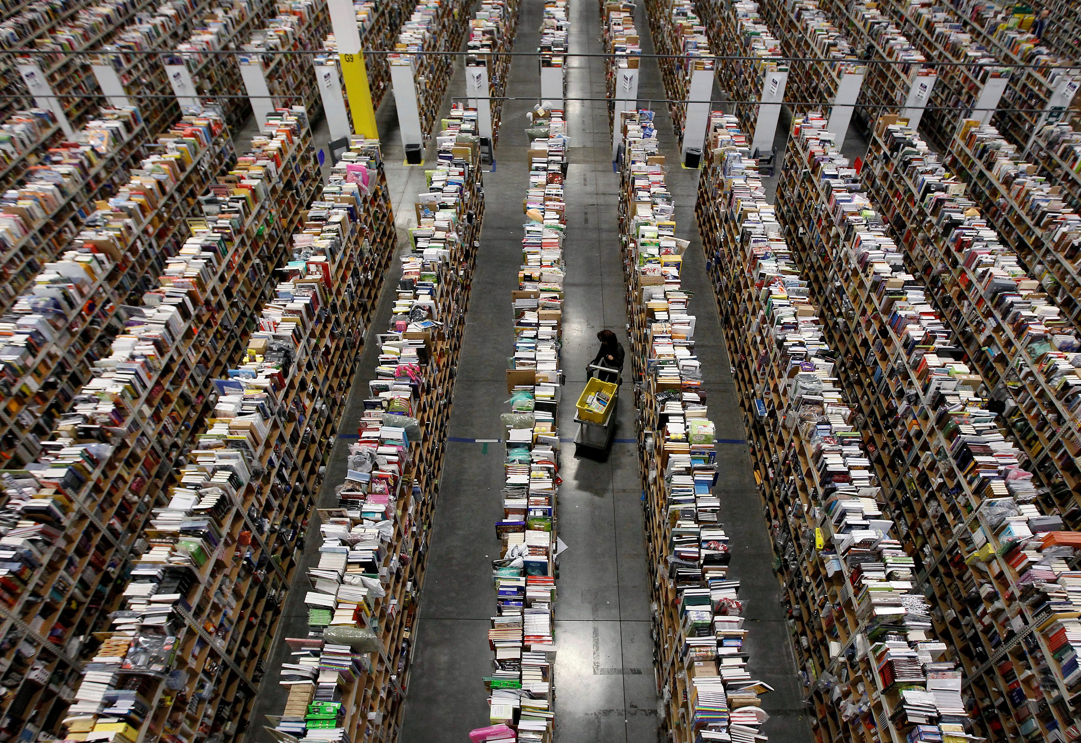 A worker gathers items for delivery from the warehouse floor at Amazon's distribution center in Phoenix, Arizona November 22, 2013.  REUTERS/Ralph D. Freso/File Photo