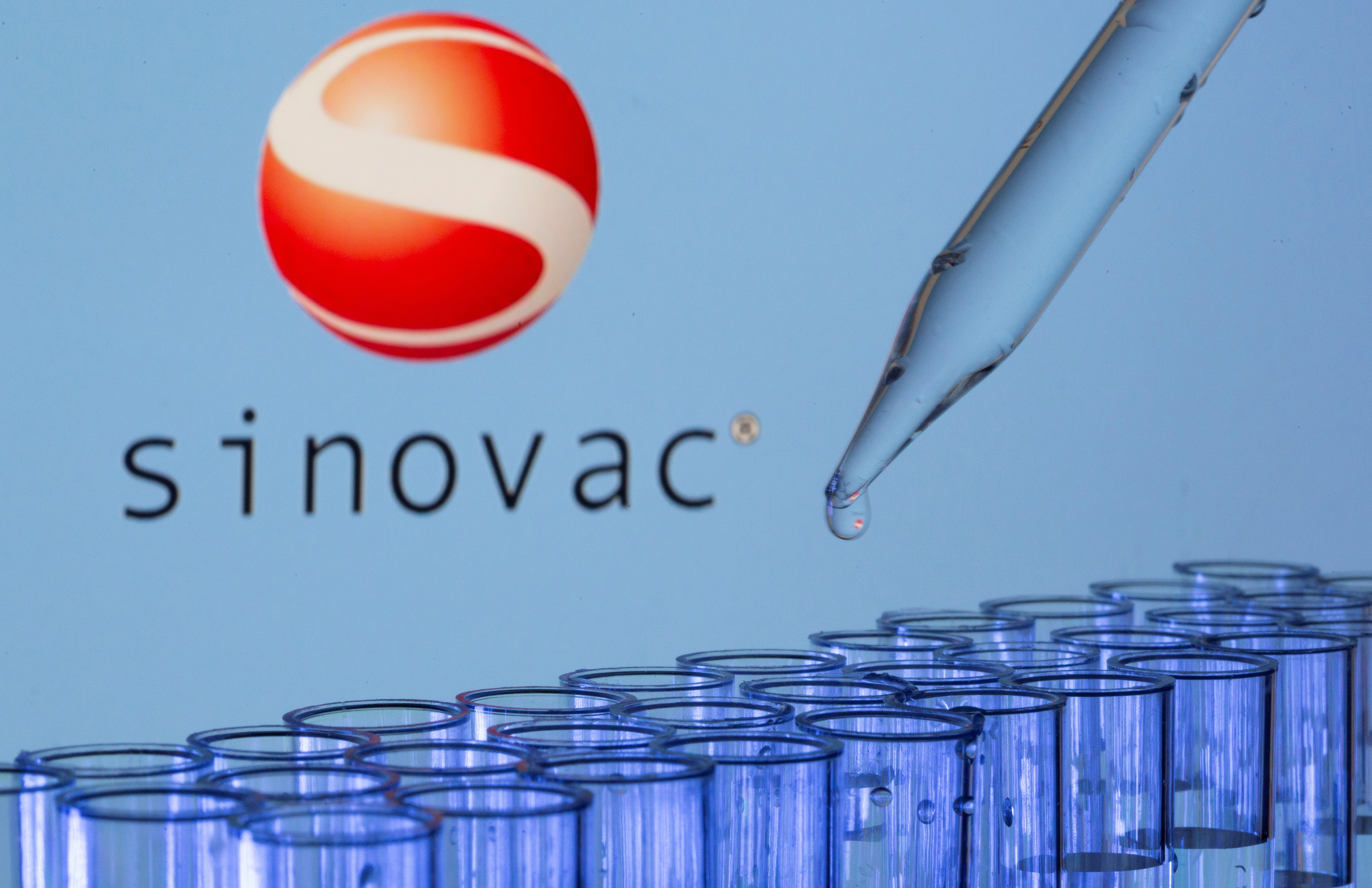 Test tubes are seen in front of a displayed Sinovac logo in this illustration taken, May 21, 2021. REUTERS/Dado Ruvic/Illustration/File Photo
