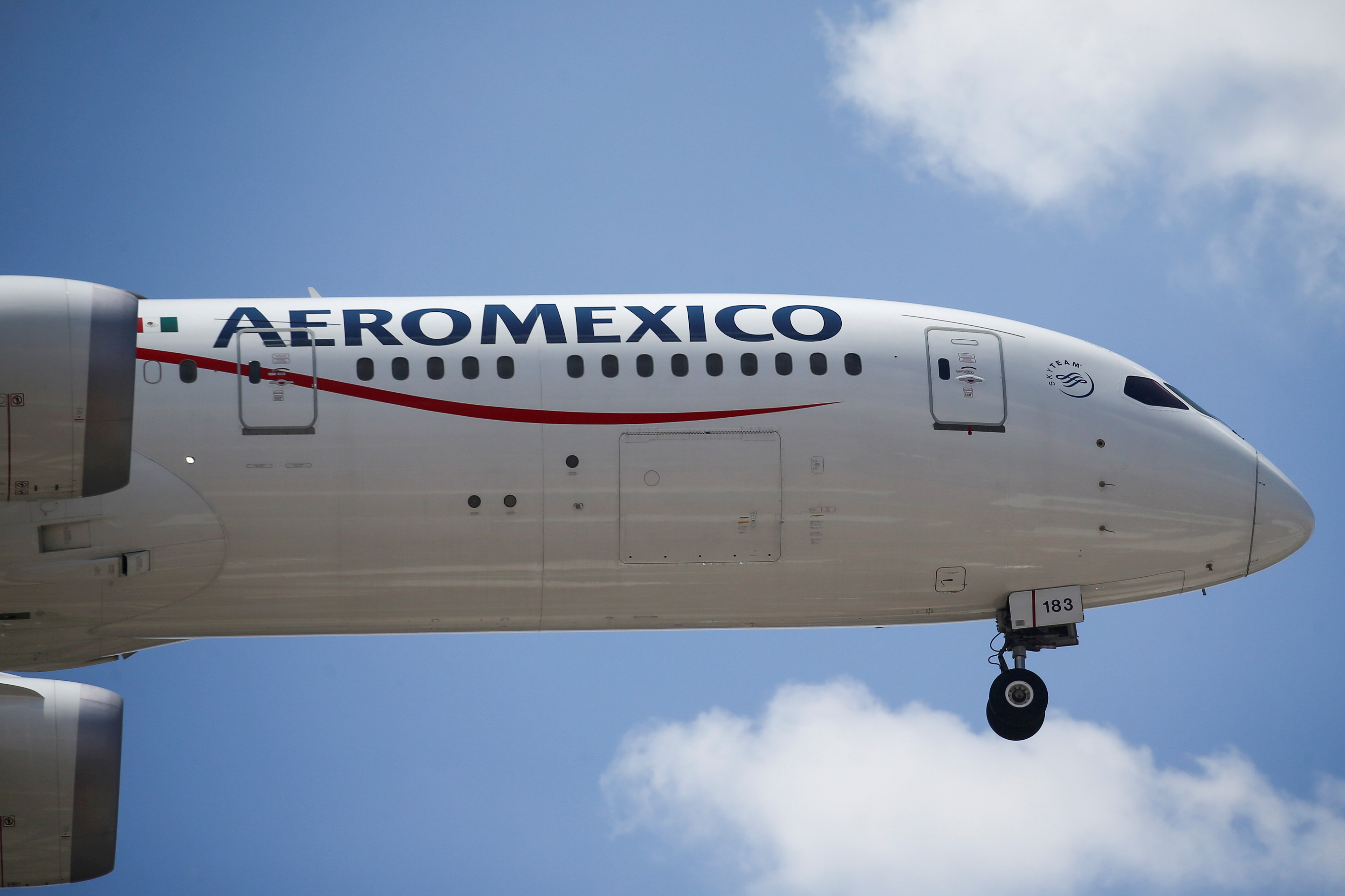 An Aeromexico airplane prepares to land on the airstrip at Benito Juarez international airport in Mexico City, Mexico, July 1, 2020. REUTERS/Edgard Garrido/File Photo