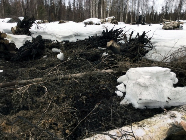 One of nearly a dozen hot spots that overwintered on the Deshka Landing Fire near Nancy Lake State Recreation Area is seen near Willow, Alaska, U.S., April 17, 2020. Brogan Putnam and Nate Blydenburgh/Alaska Division of Forestry/Handout via REUTERS