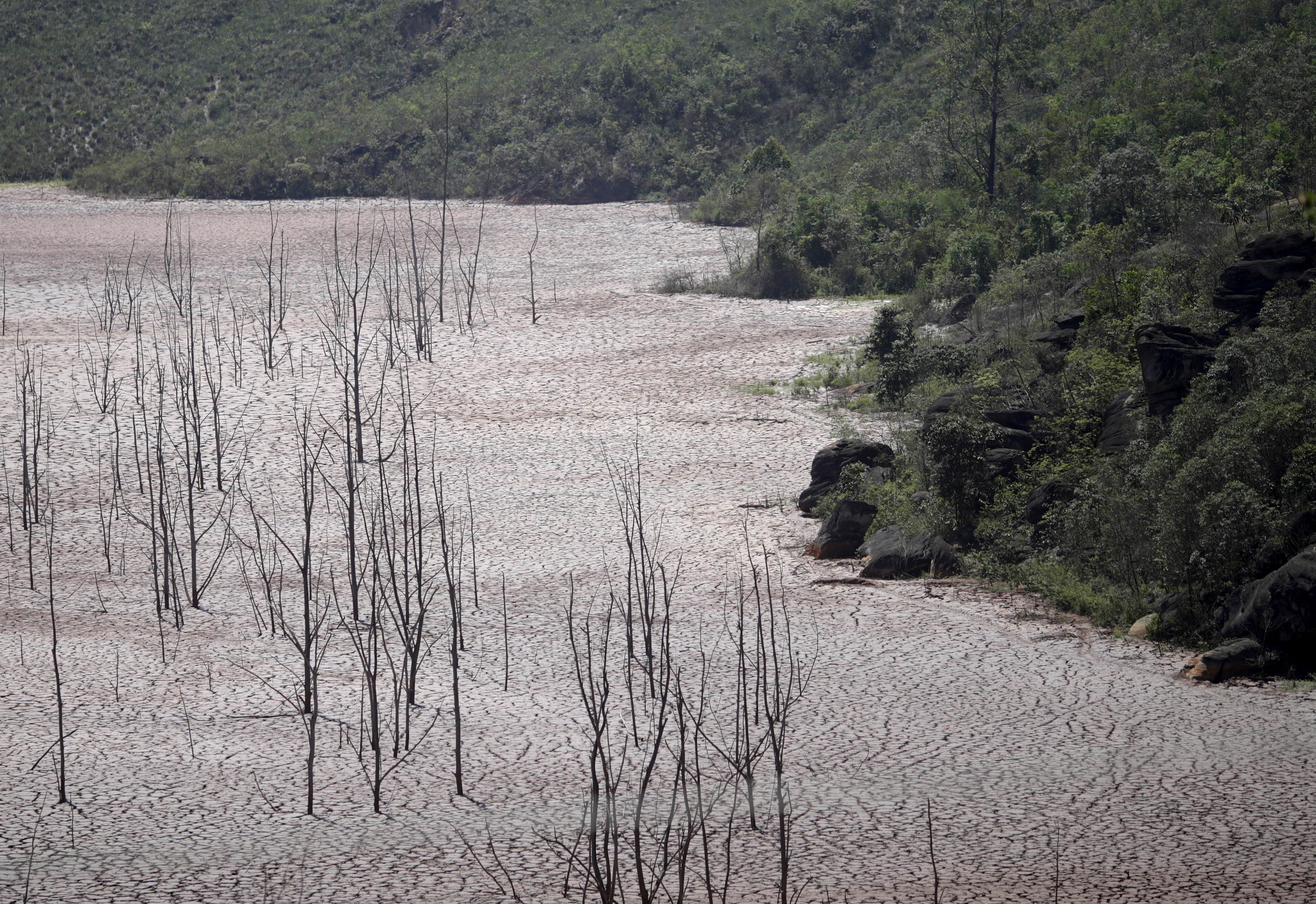 The banks of a dam owned by Vale SA and BHP Billiton Ltd that burst, is pictured in Mariana, Brazil, November 10, 2015. REUTERS/Ricardo Moraes/File Photo