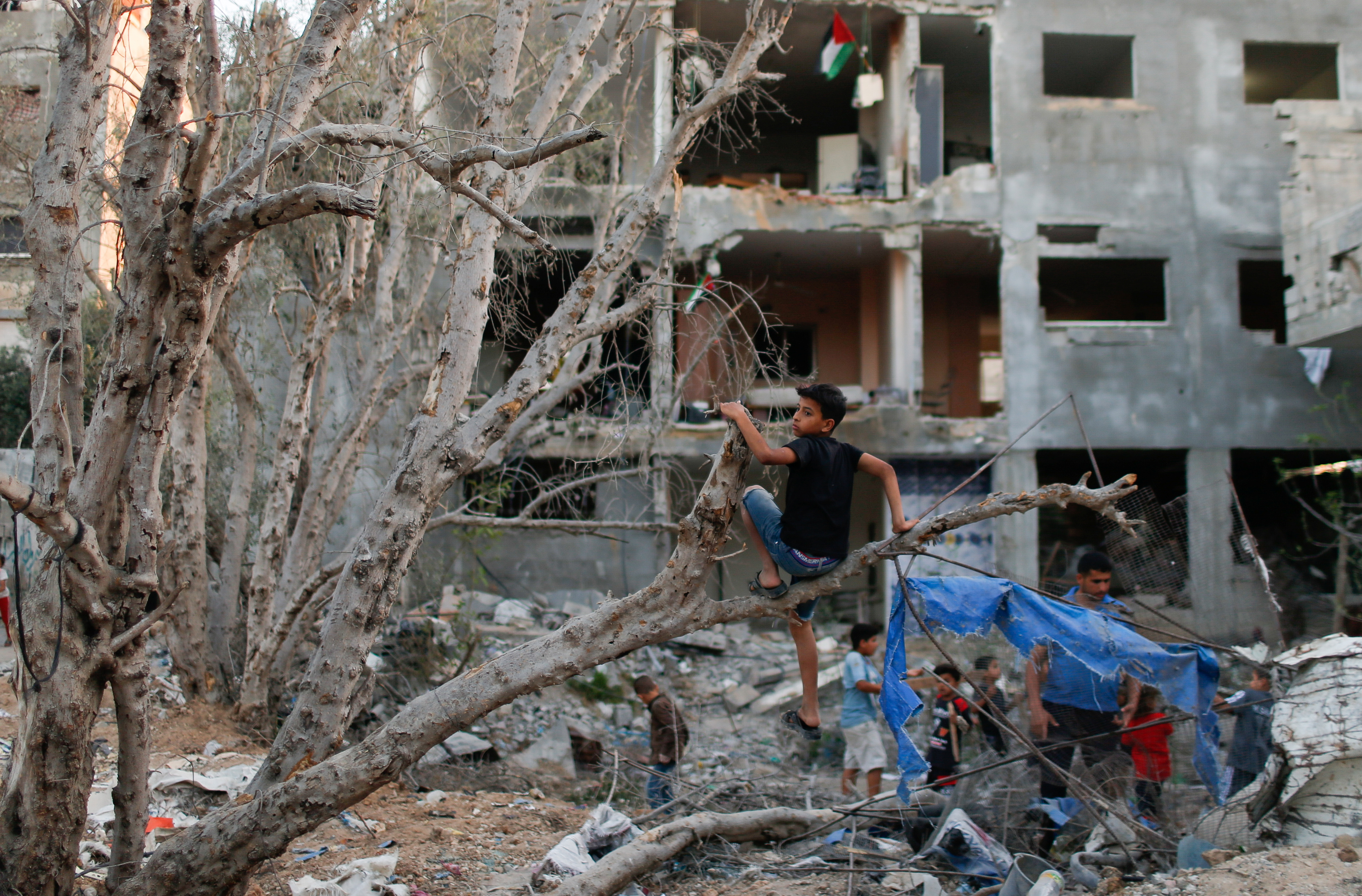 A Palestinian boy sits in a tree near a building destroyed during Israeli-Palestinian fighting, in the northern Gaza Strip June 1, 2021. REUTERS/Mohammed Salem