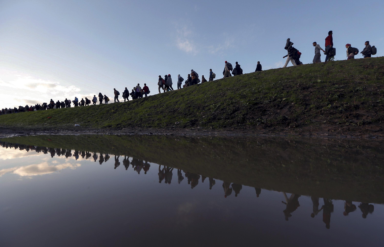 Migrants make their way on foot on the outskirts of Brezice, Slovenia October 20, 2015. REUTERS/Srdjan Zivulovic