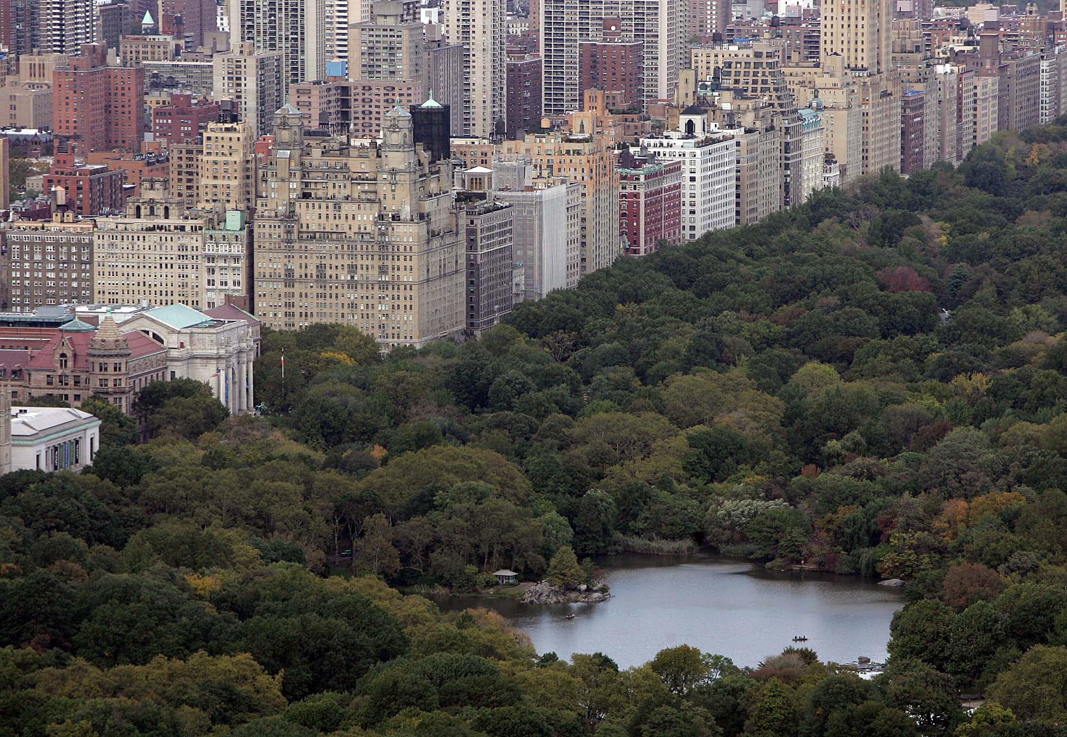 A view of Central Park in a file photo.  REUTERS/Seth Wenig