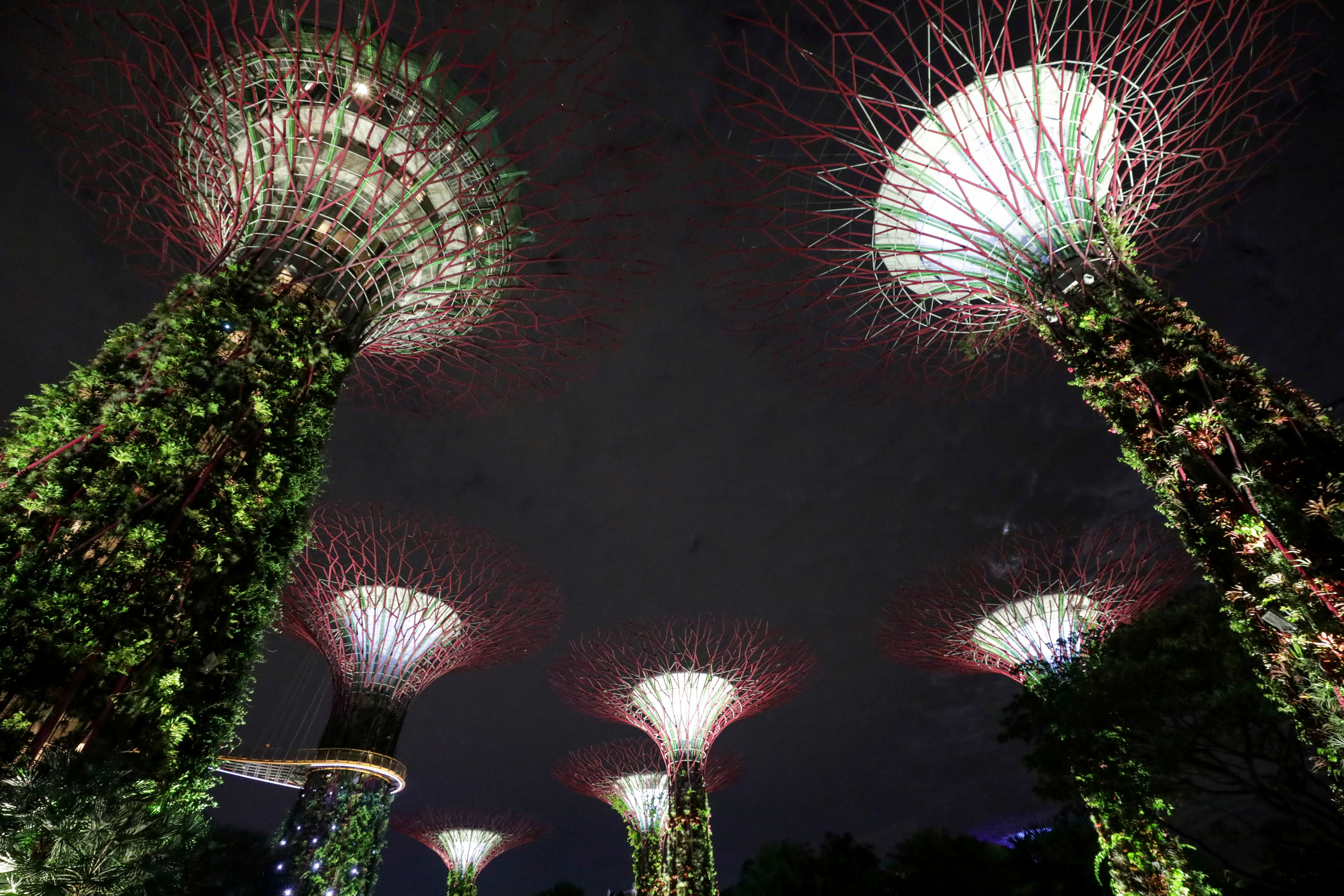 Artificial tree-like structures called Supertrees are seen before lights were switched off to commemorate Earth Hour, at Gardens By the Bay, in Singapore, March 27, 2021. REUTERS/Dawn Chua/File Photo