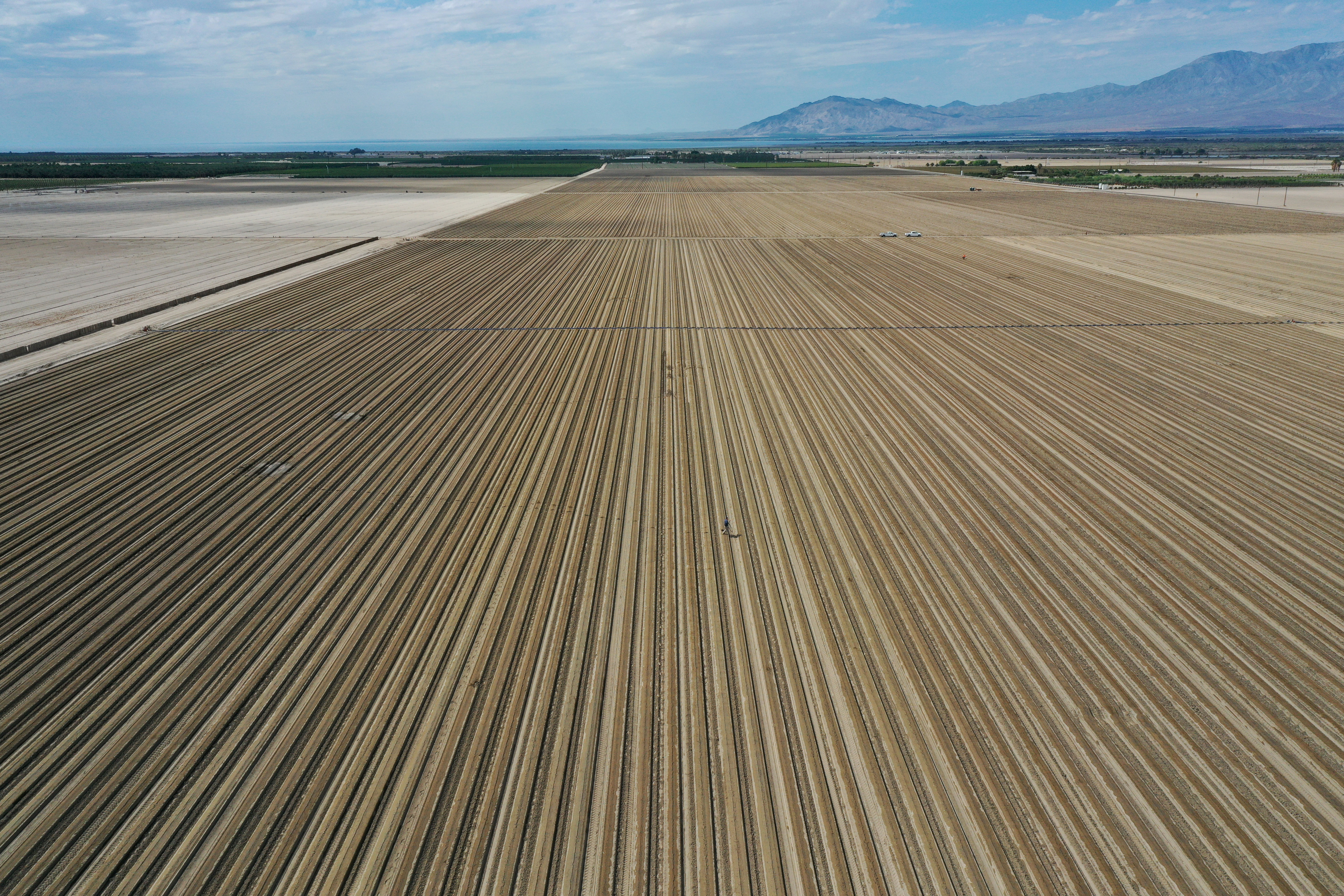 An aerial view shows agricultural fields as California faces its worst drought since 1977, in Mecca, California, U.S., July 4, 2021. REUTERS/Aude Guerrucci