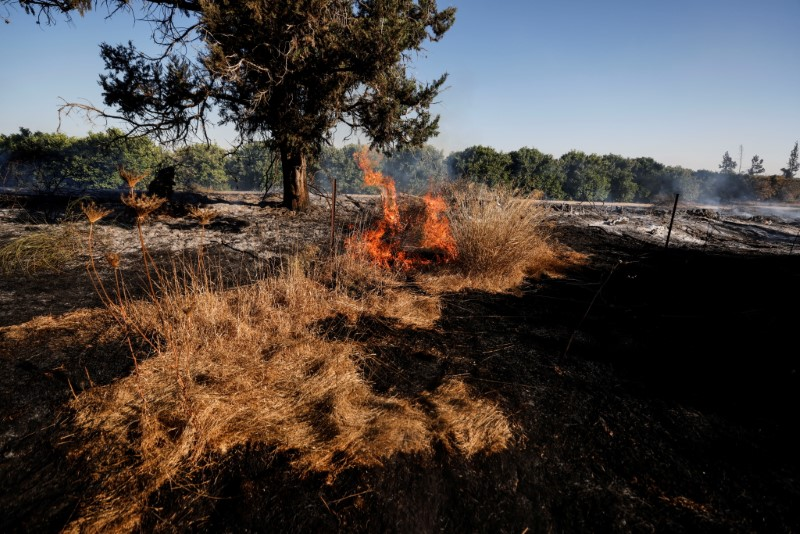 A field on fire is seen after Palestinians in Gaza sent incendiary balloons over the border between Gaza and Israel, Near Nir Am June 15,2021. REUTERS/Amir Cohen