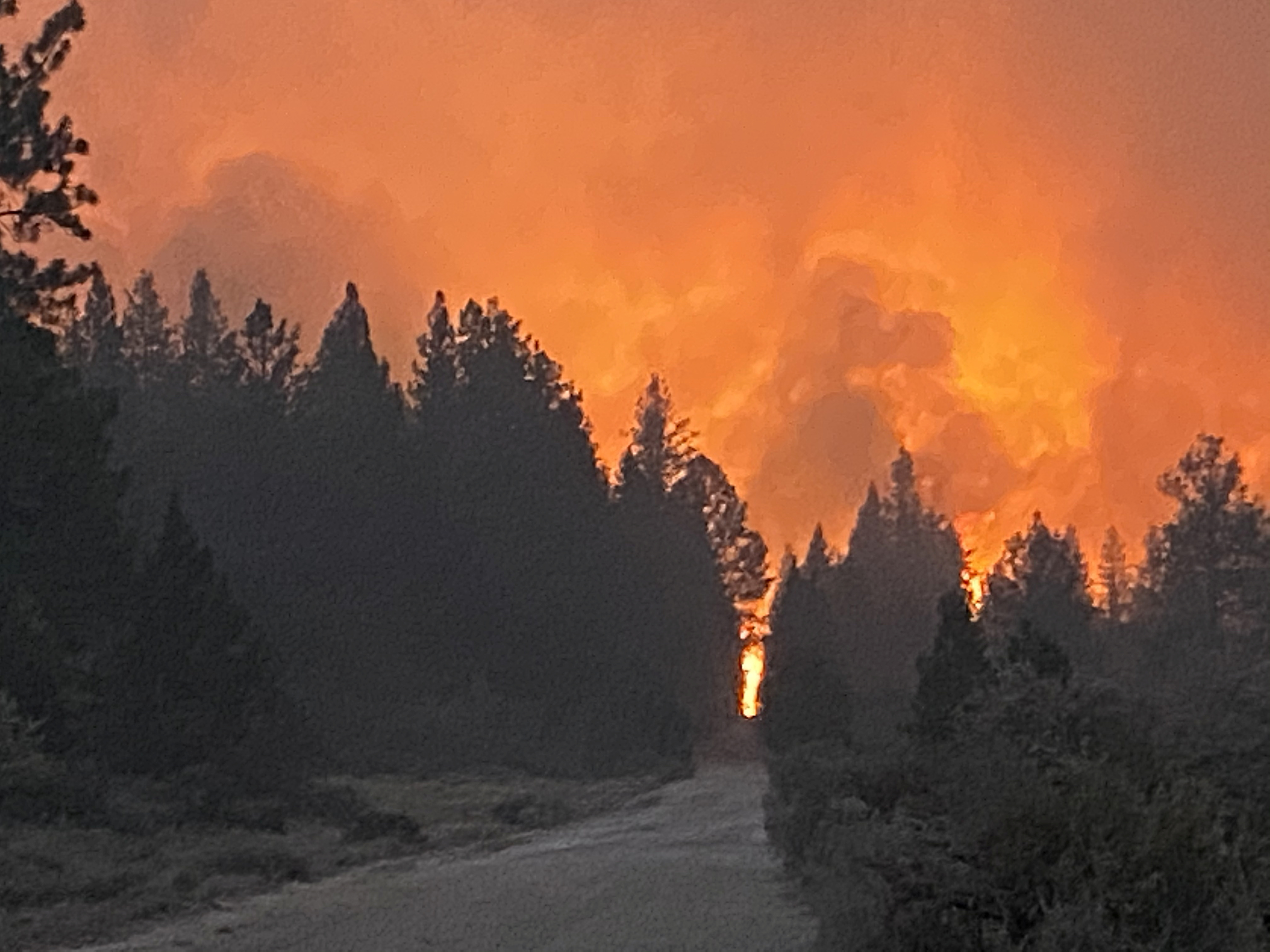 U.S. at Highest Alert Level as Wildfires Rage Across 12 Western States