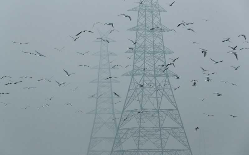 Birds fly next to electricity pylons on a smoggy afternoon in the old quarters of Delhi, India, October 30, 2019. REUTERS/Adnan Abidi/File Photo