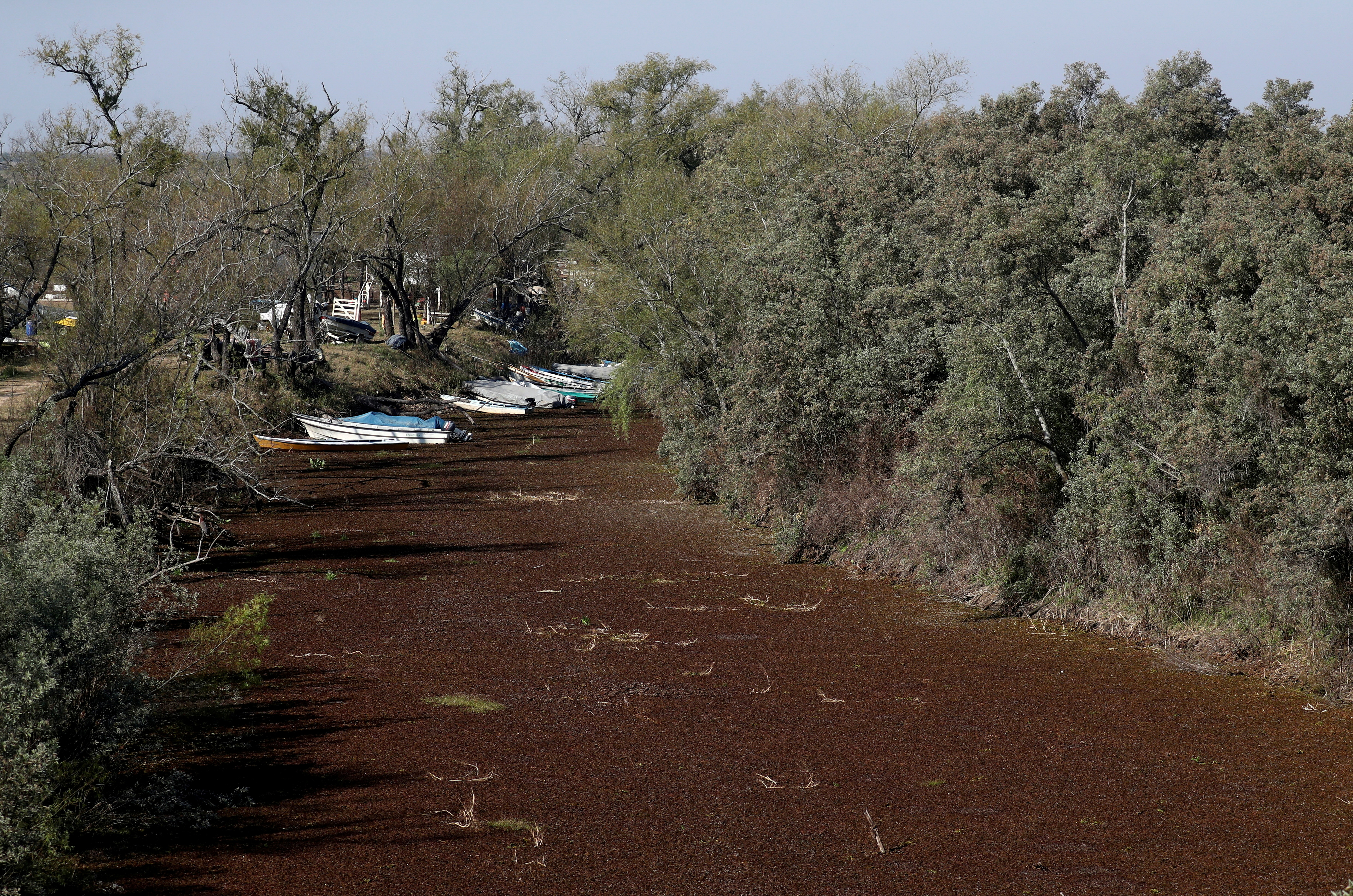 Boats are seen stranded in a dried out wetland on the shore of the Parana River, in Rosario, Argentina July 8, 2021. The lack of rain in Brazil, where the river originates, has brought water levels down in Argentina, forcing cargo ships to reduce the amount of grains that are loaded for export.  REUTERS/Agustin Marcarian