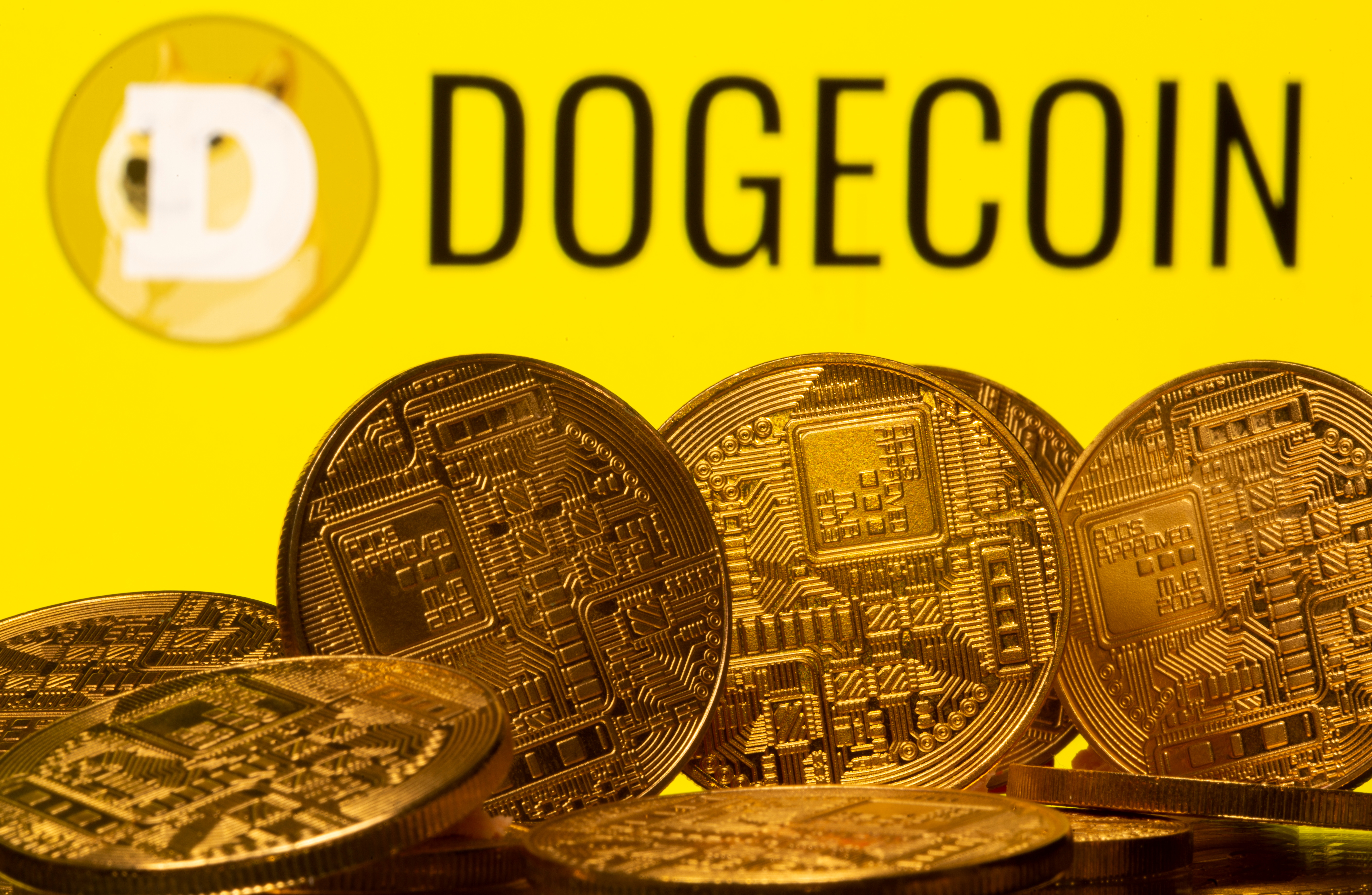 Cryptocurrency representations are seen in front of the Dogecoin logo in this illustration picture taken April 20, 2021. REUTERS/Dado Ruvic/Illustration