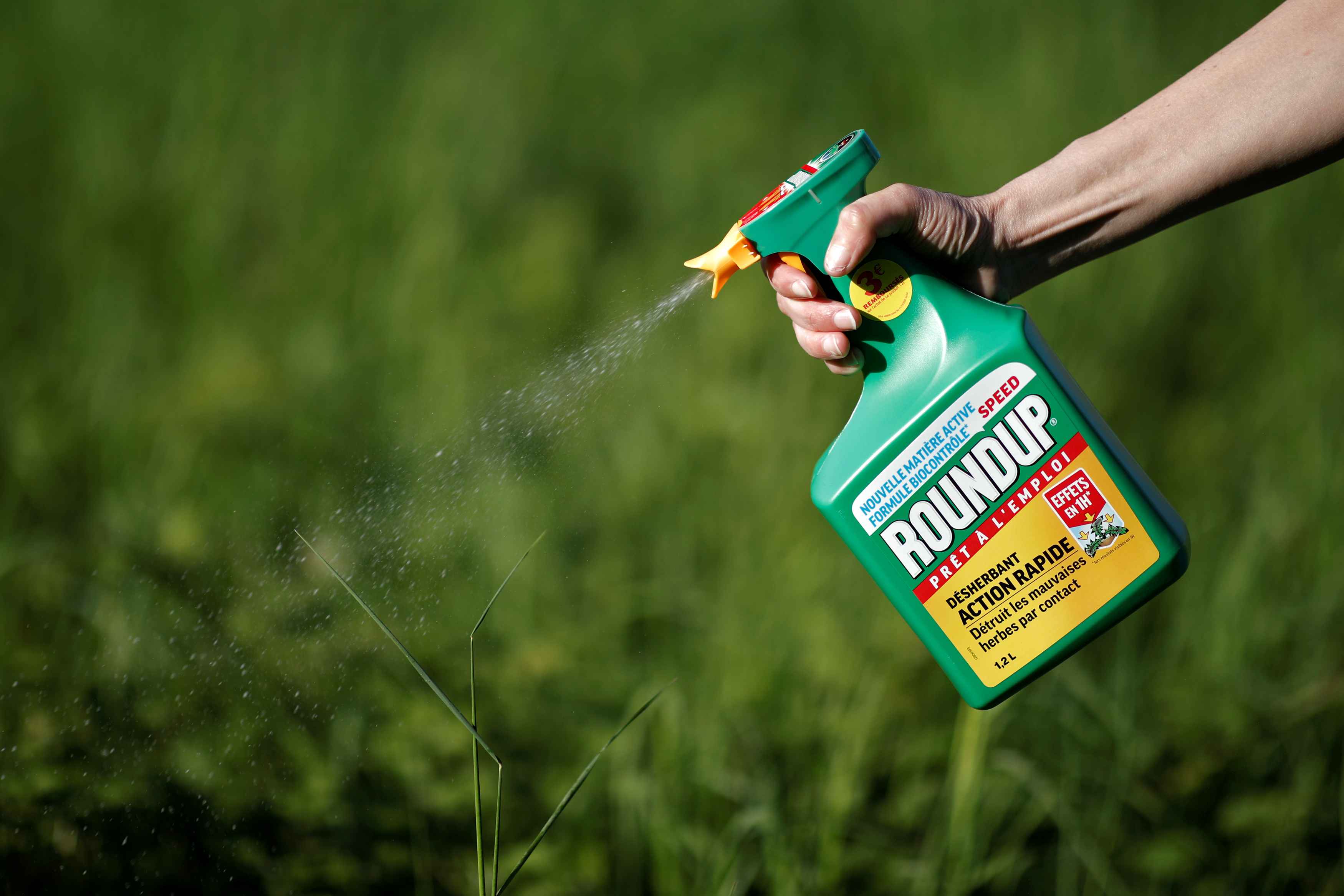 A woman uses a Monsanto's Roundup weedkiller spray without glyphosate in a garden in Ercuis near Paris, France, May 6, 2018.
