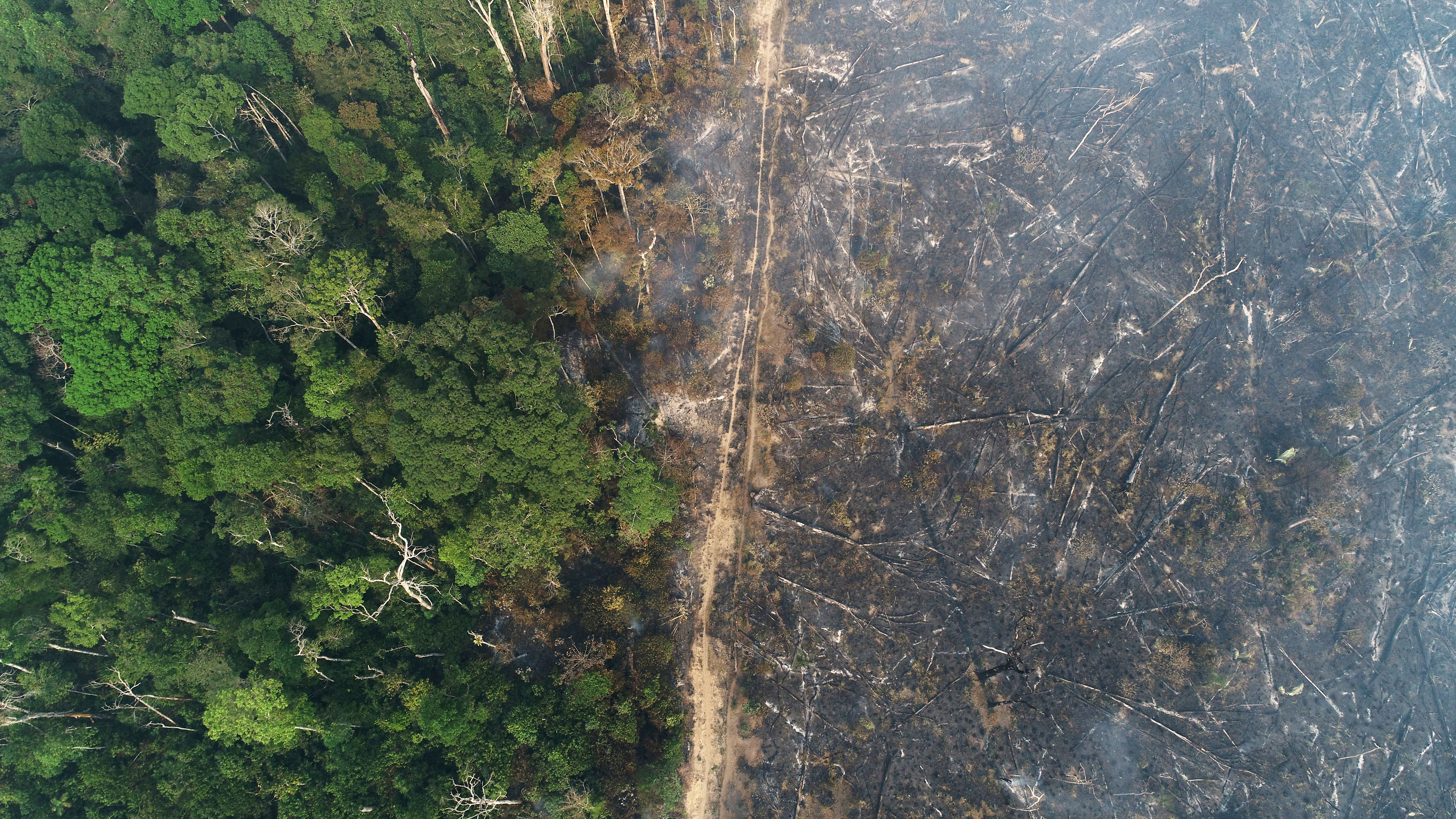 General view of a tract of the Amazon jungle which burns as it is cleared by loggers and farmers near Apui, Amazonas State, Brazil August 11, 2020. Picture taken with a drone. REUTERS/Ueslei Marcelino/File Photo