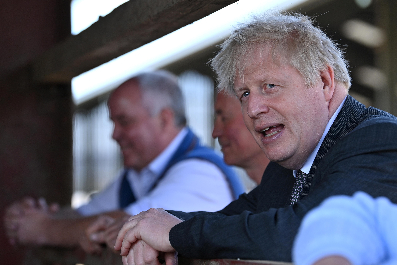 Britain's Prime Minister Boris Johnson speaks during his visit to a farm in Wrexham, Wales, Britain April 26, 2021. Paul Ellis/Pool via REUTERS
