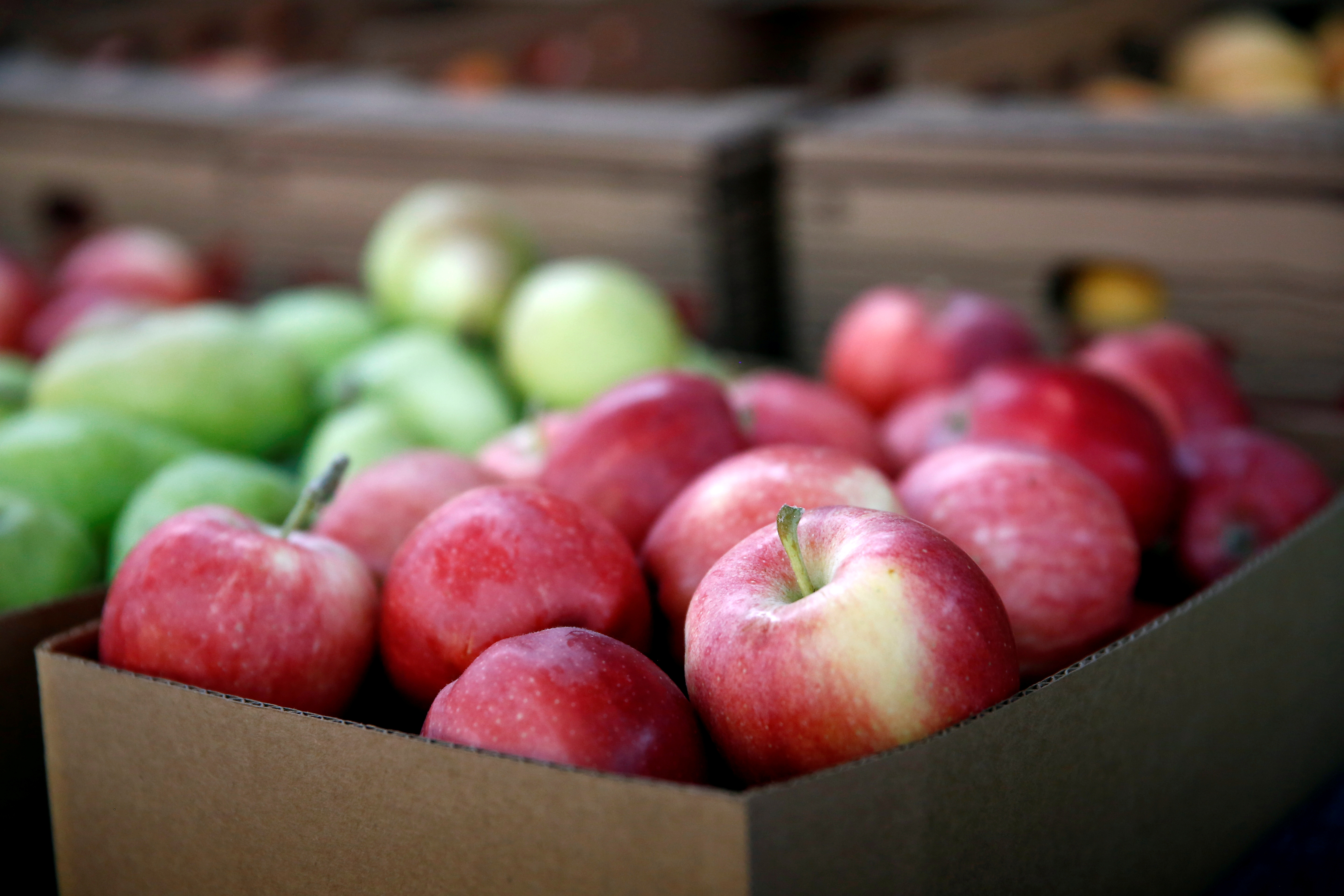 Gala apples are for sale at the B&B Fruit Stand in East Wenatchee, Washington, U.S., September 2, 2018. REUTERS/Lindsey Wasson/File Photo
