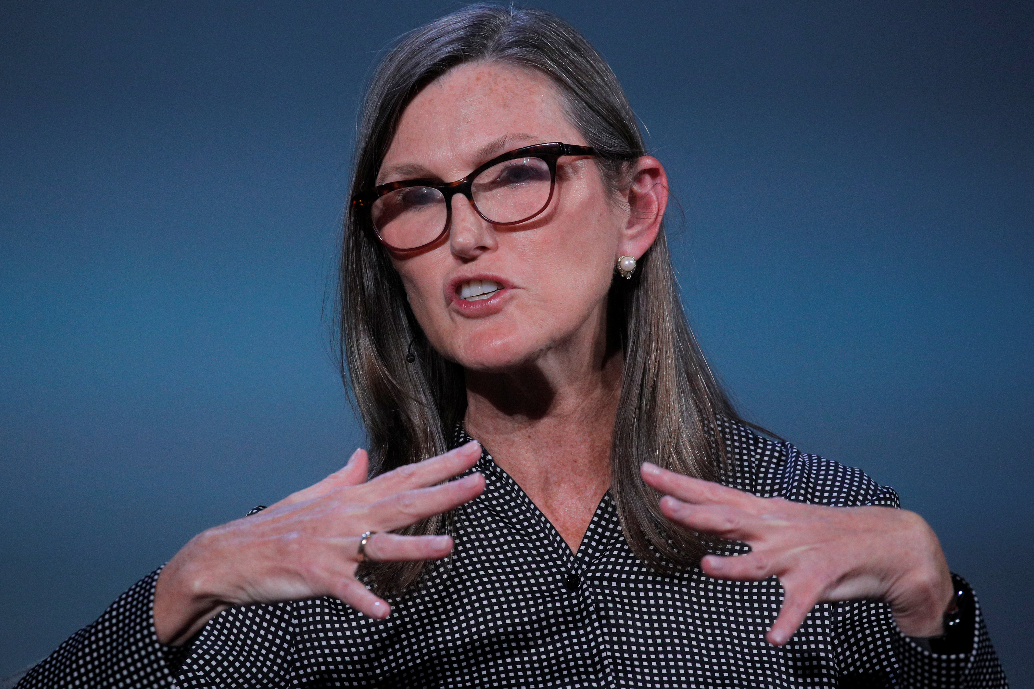 Cathie Wood, founder and CEO of ARK Investment Management LLC, speaks during the Skybridge Capital SALT New York 2021 conference in New York City, U.S., September 13, 2021.  REUTERS/Brendan McDermid