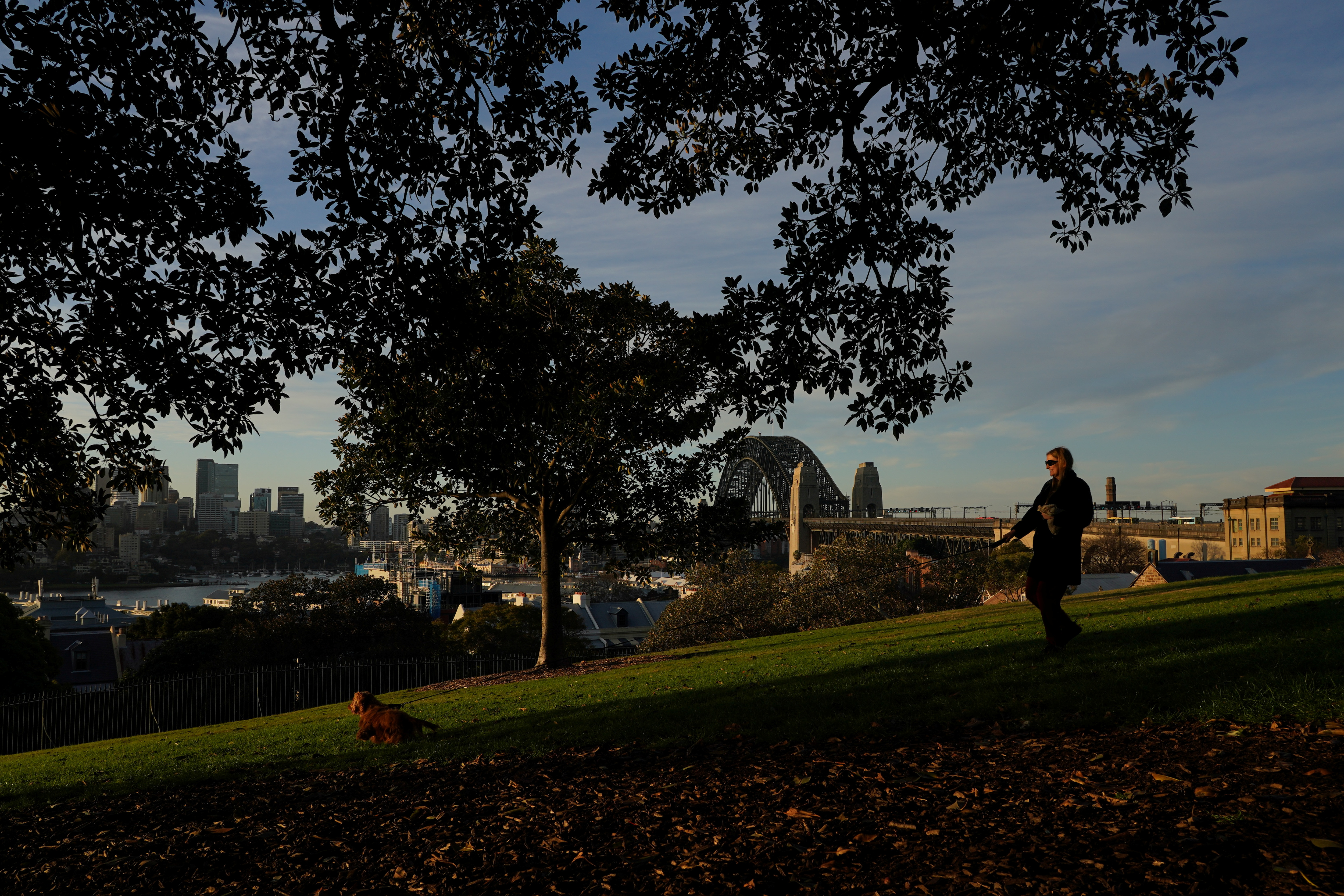 A woman walks a dog at a popular city lookout spot during a lockdown to curb the spread of a coronavirus disease (COVID-19) outbreak in Sydney, Australia, July 12, 2021.  REUTERS/Loren Elliott