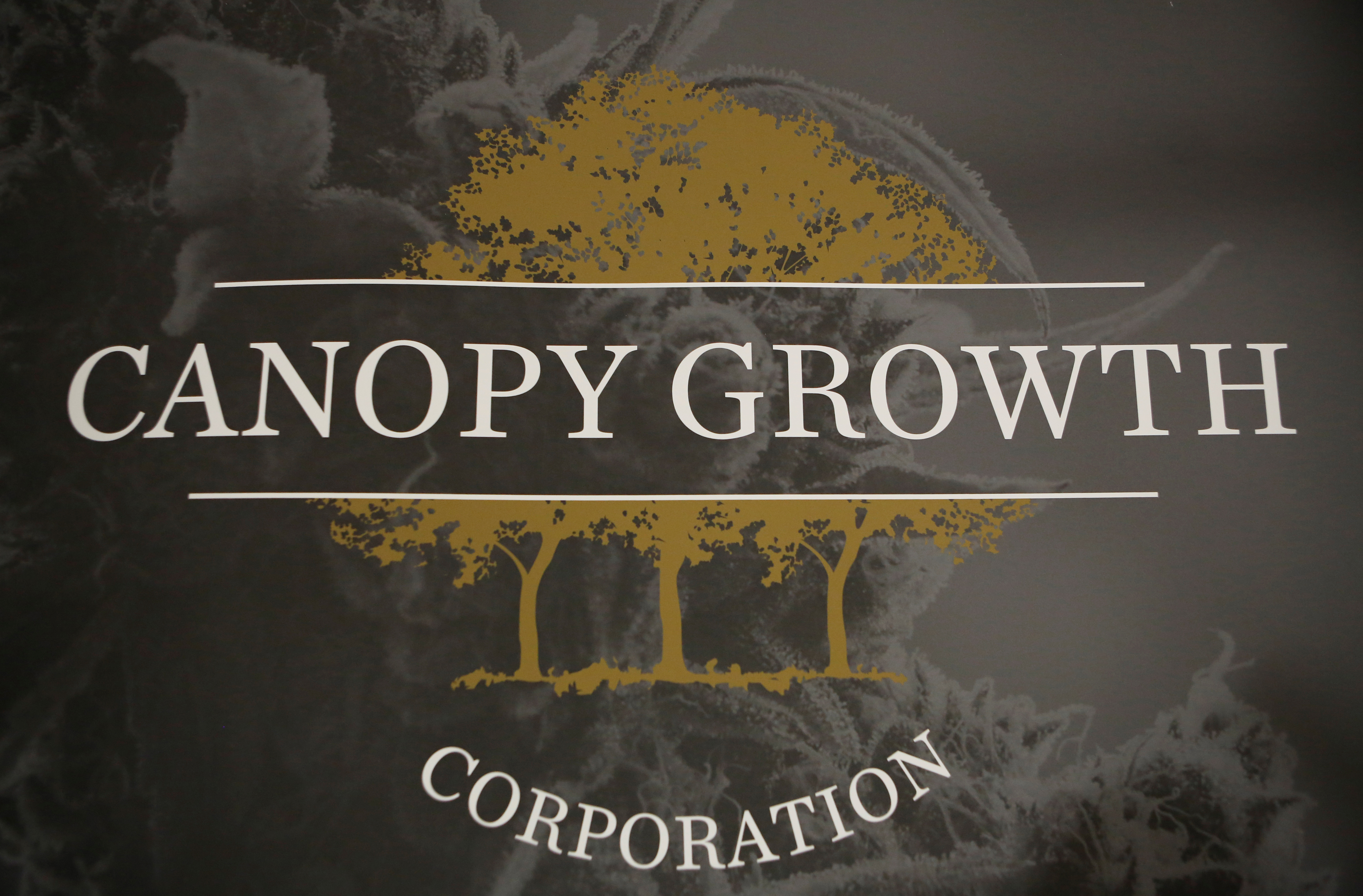 A sign featuring Canopy Growth Corporation's logo is pictured at their facility in Smiths Falls, Ontario, Canada, January 4, 2018. REUTERS/Chris Wattie