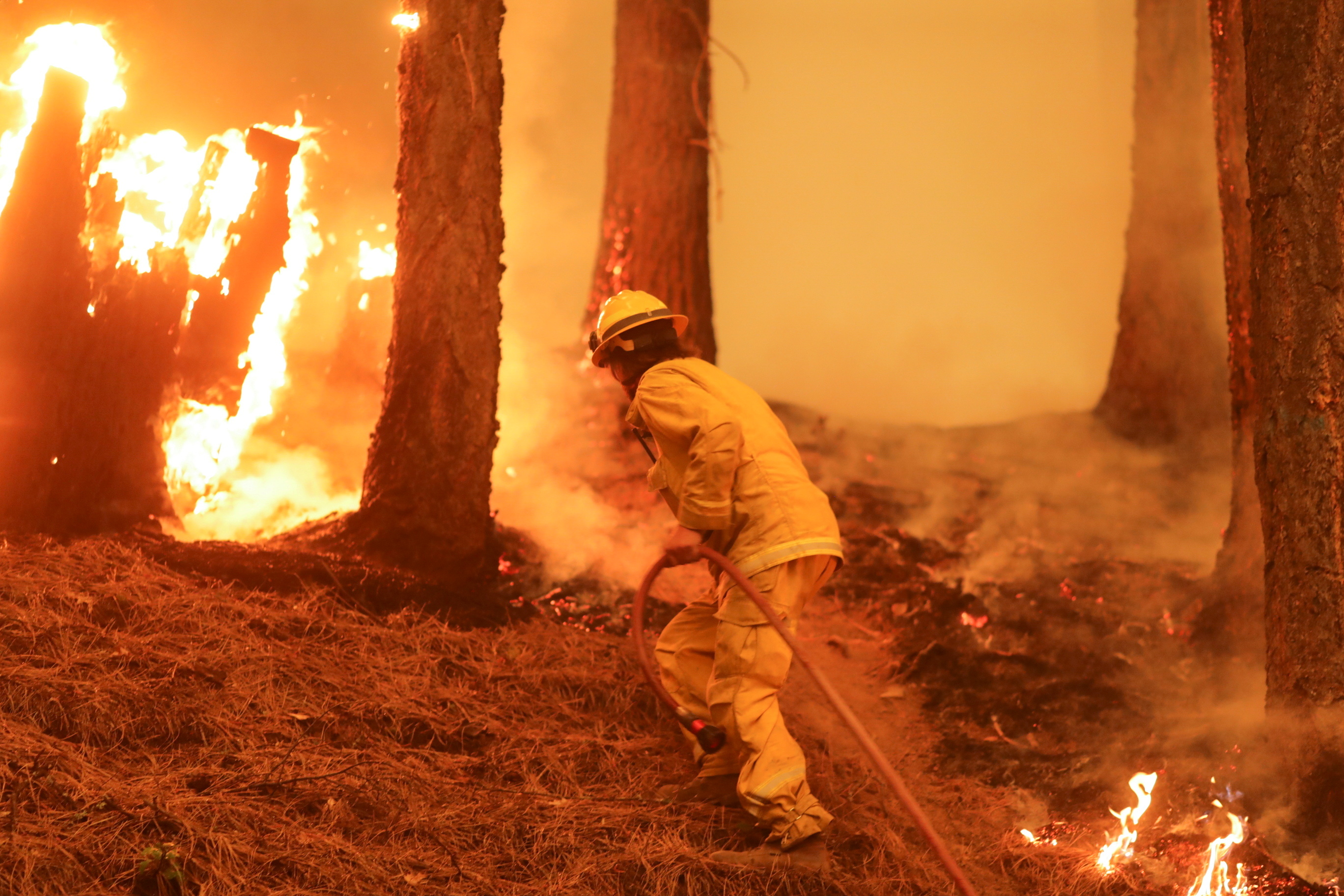 A firefighter continues to hold the line of the Dixie Fire near Taylorsville, California, U.S., August 10, 2021. REUTERS/David Swanson/File Photo
