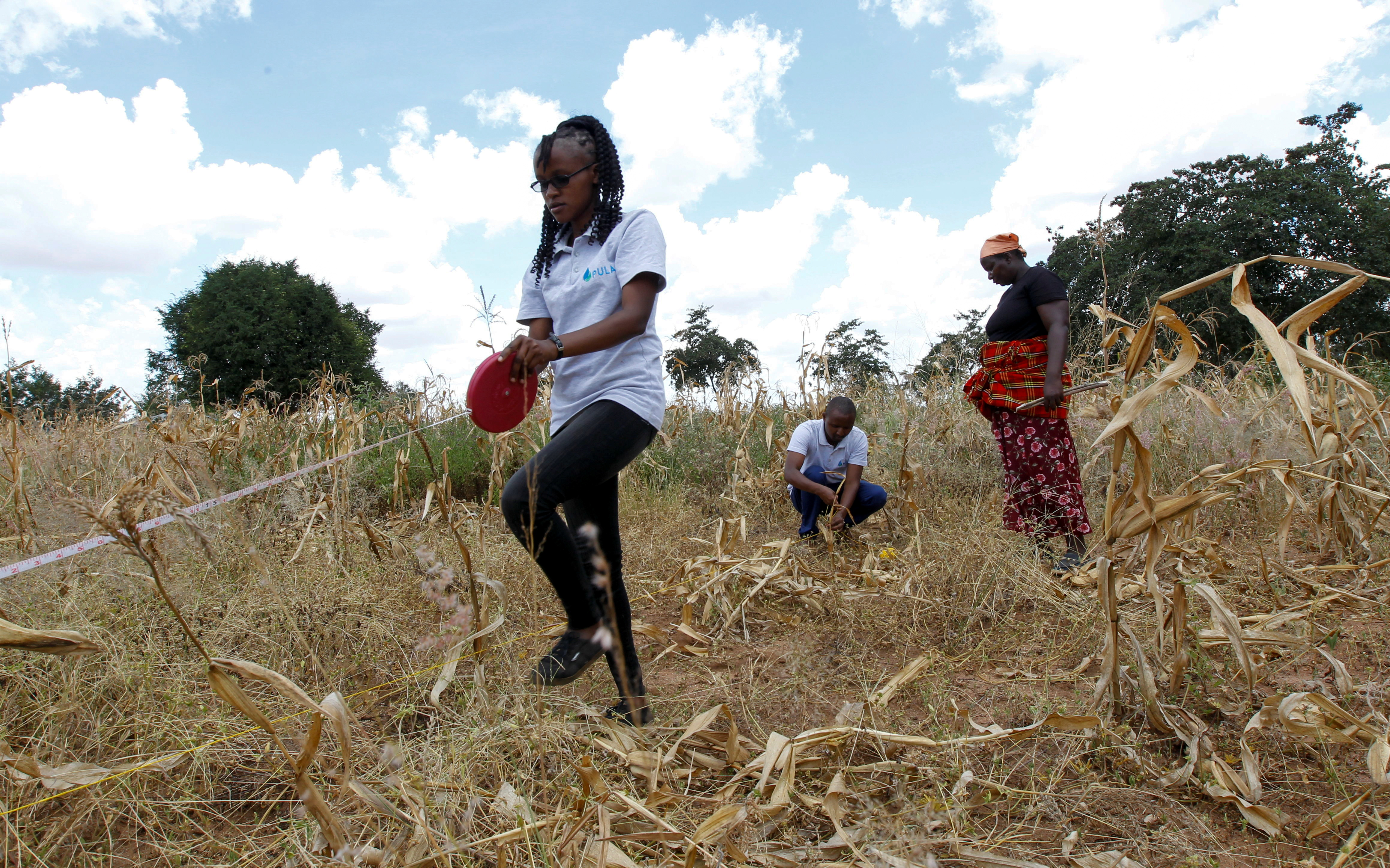 Pula operations manager Daniel Mbuvi and field officer Ruth Wambua take measurements for the area that will be used as a sample for insurance payout, at Waki Munyalo's farm in Kitui county, Kenya, March 17, 2021. Picture taken March 17, 2021. REUTERS/Monicah Mwangi